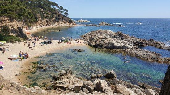Foto playa Cala d'en Carlos / Camping Llevado.