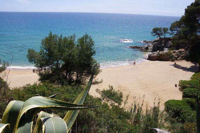 Foto playa Treumal.