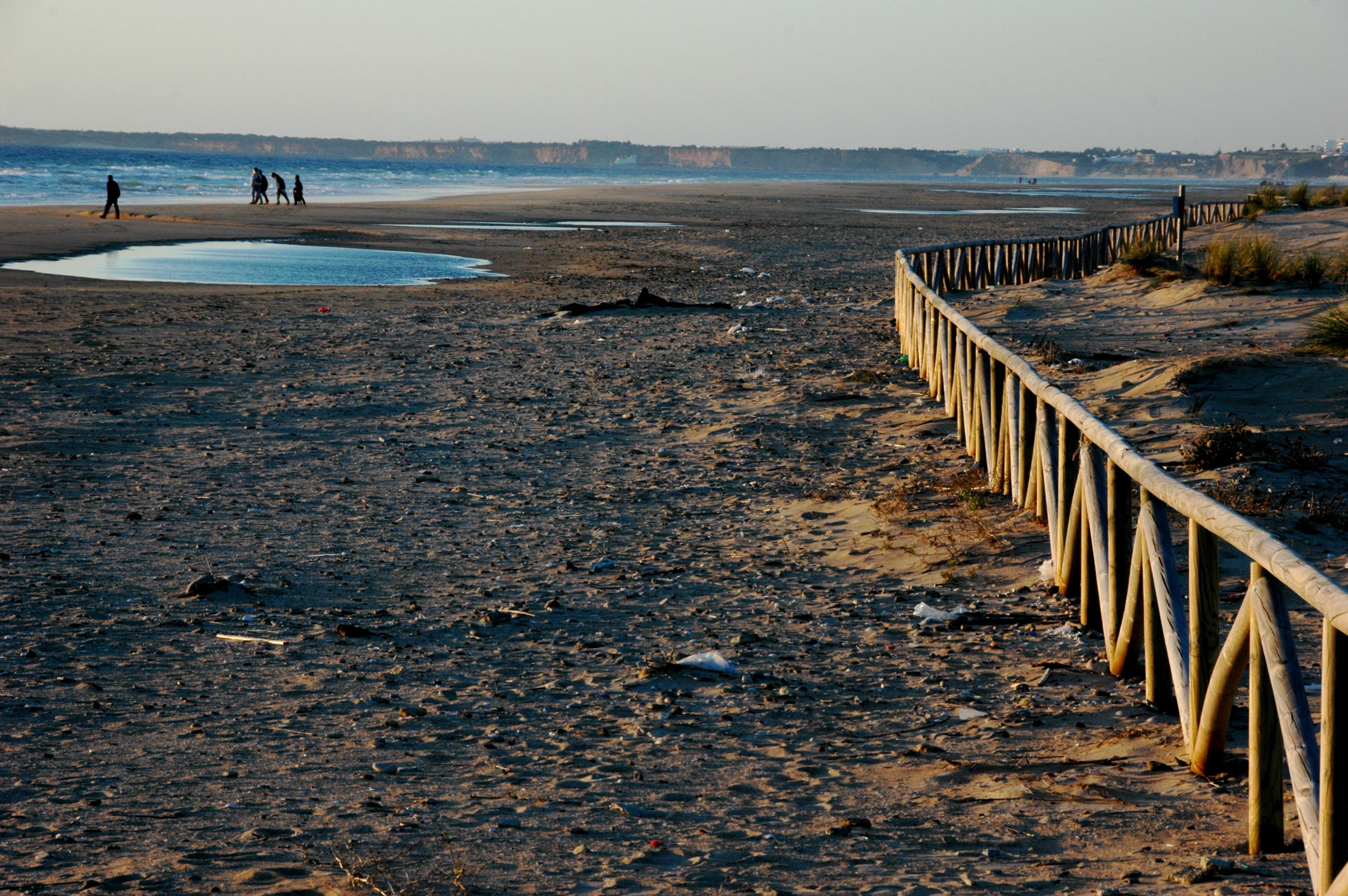 Foto playa Zahara de los Atunes. El palmar