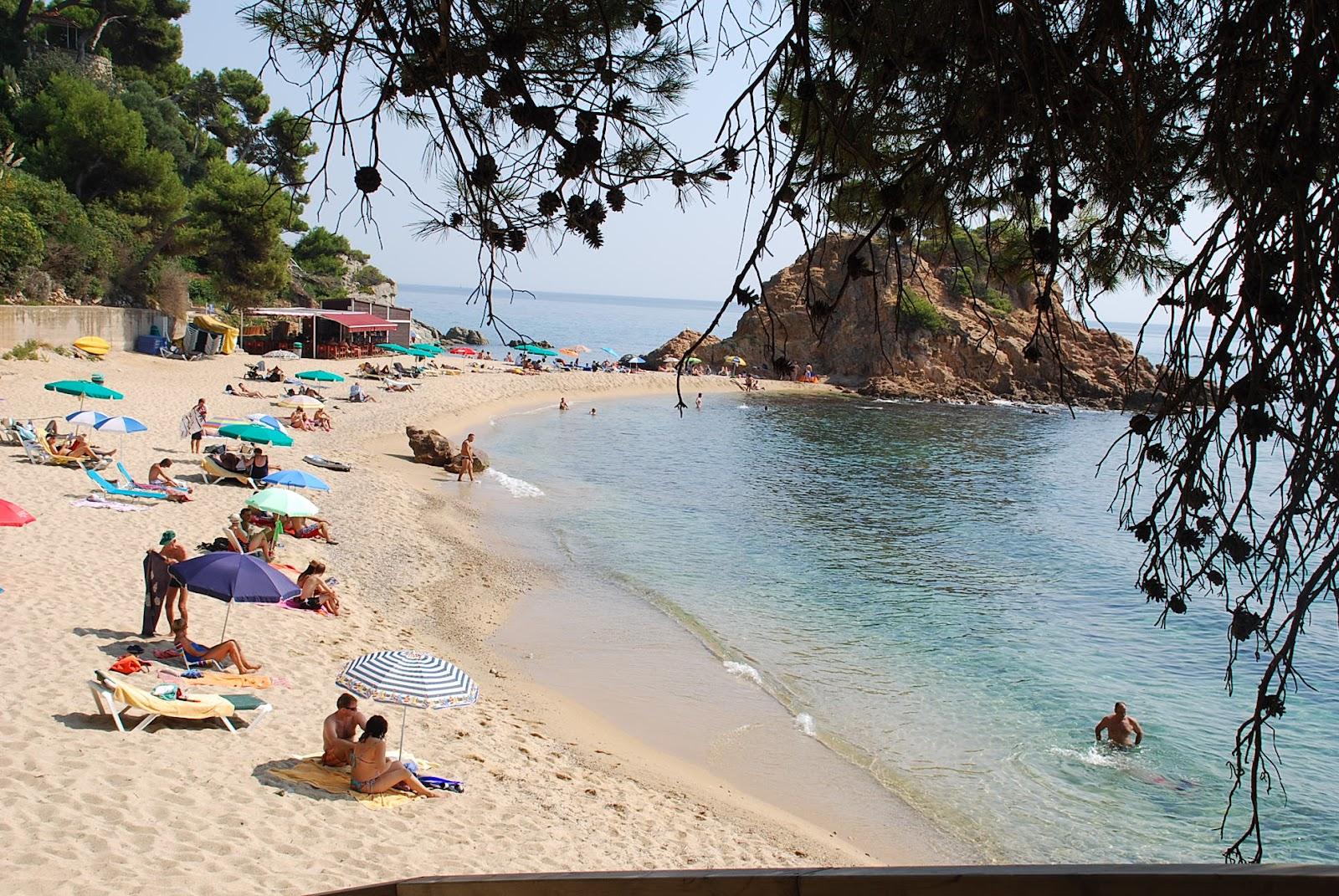Foto playa Punta Els Canyers.
