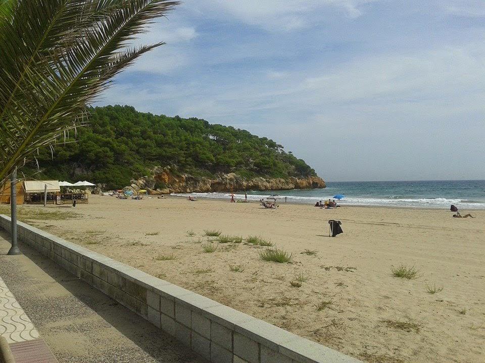 Playa Cala Pedrosa