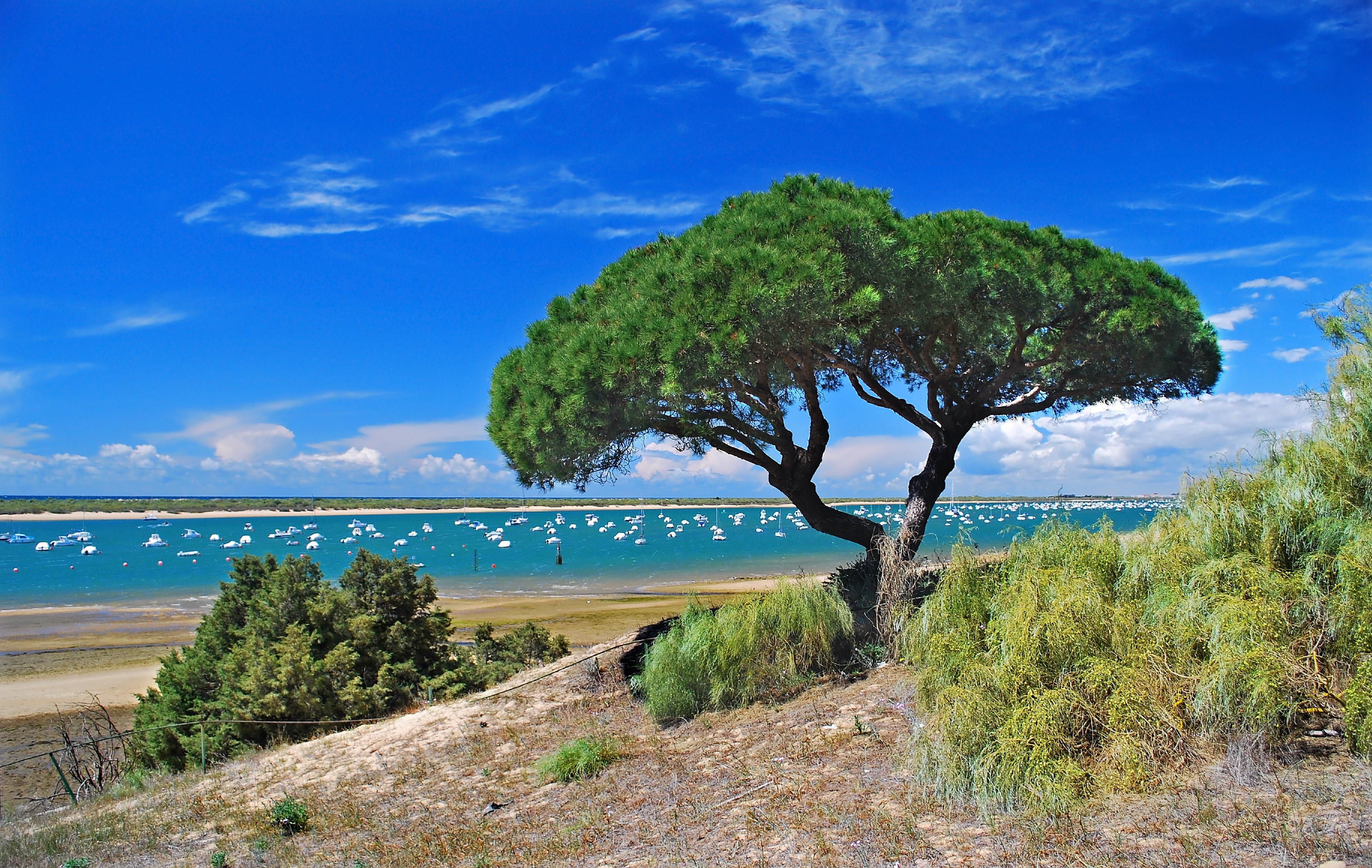 Playa Playa de la Corcollada