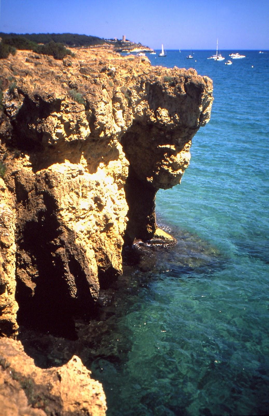 Foto playa Platja dels Pinets.