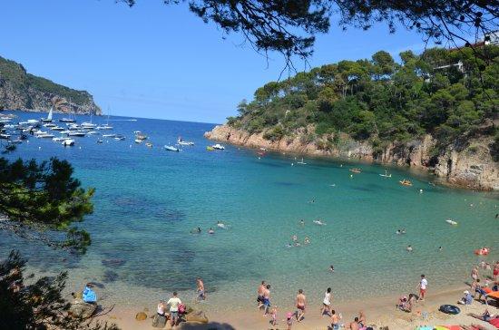 Foto playa Cala Bon Capó.
