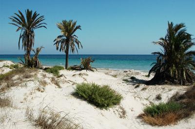 Foto playa La Barraca Quemada / La Llana - Barraca.