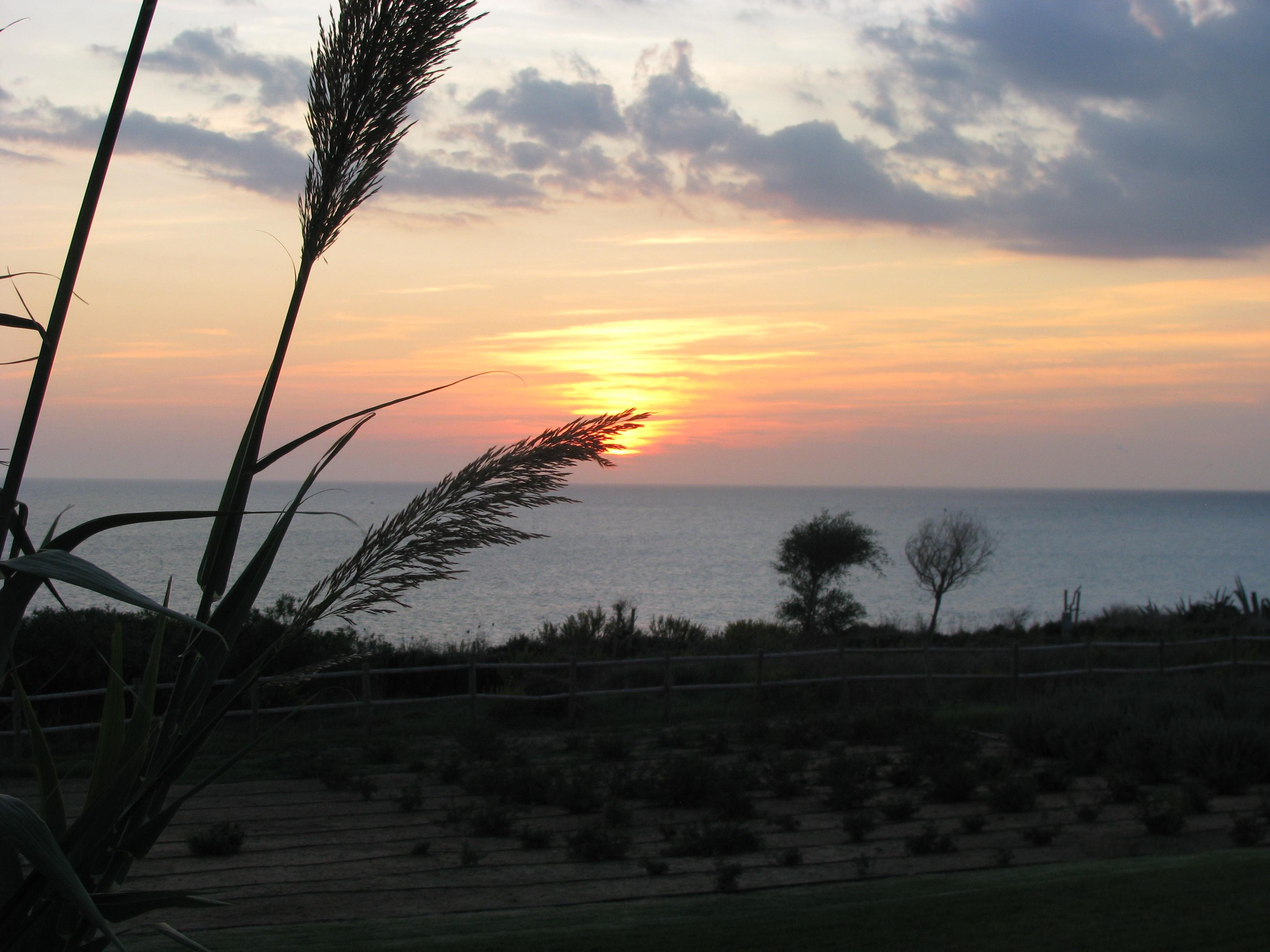 Foto playa Fuente del Gallo. El ocaso en Conil,  Cadiz