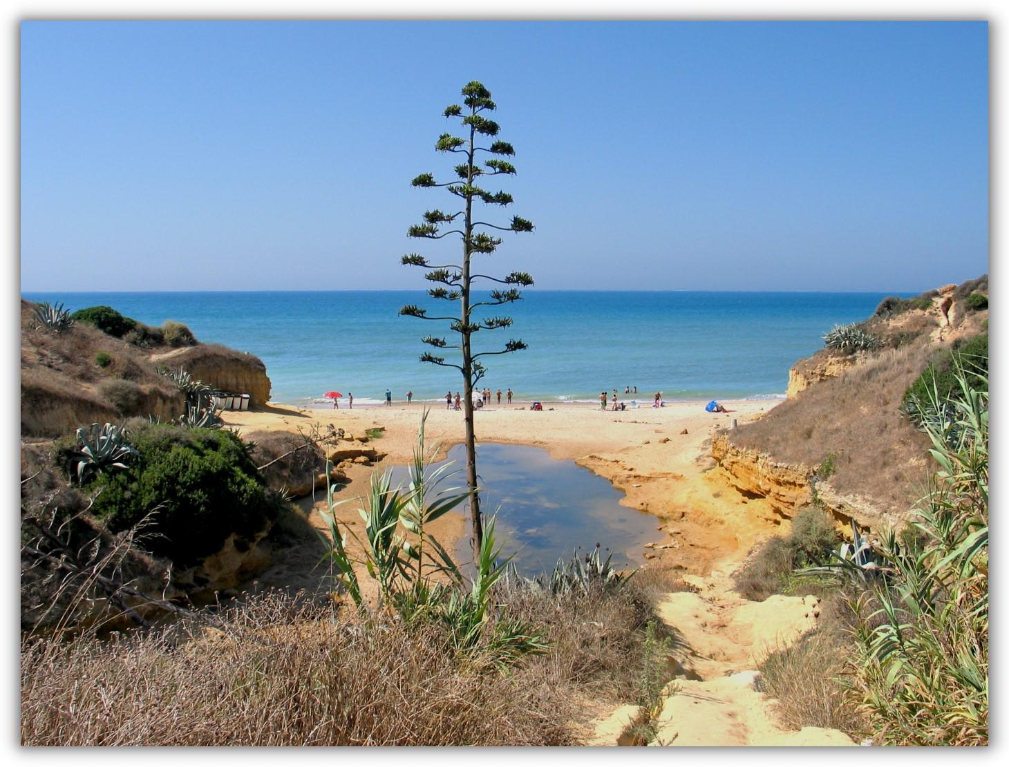 Foto playa Calas del Quinto y Camacho. Conil-24 (210°)