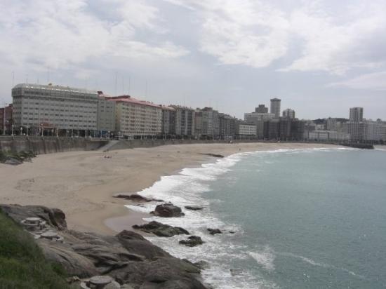 Foto playa Playa del Puerto.