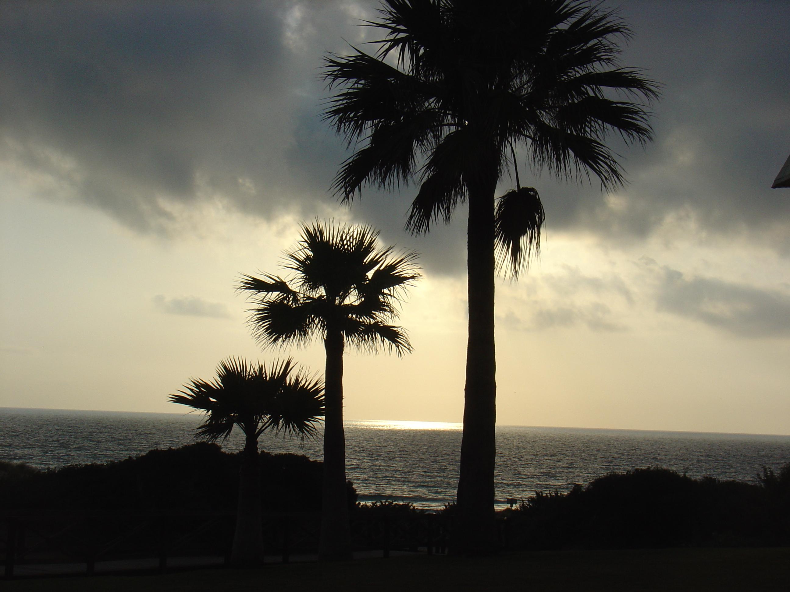 Foto playa Punta de Piedras. Atardecer en el Novo Sancti Petri