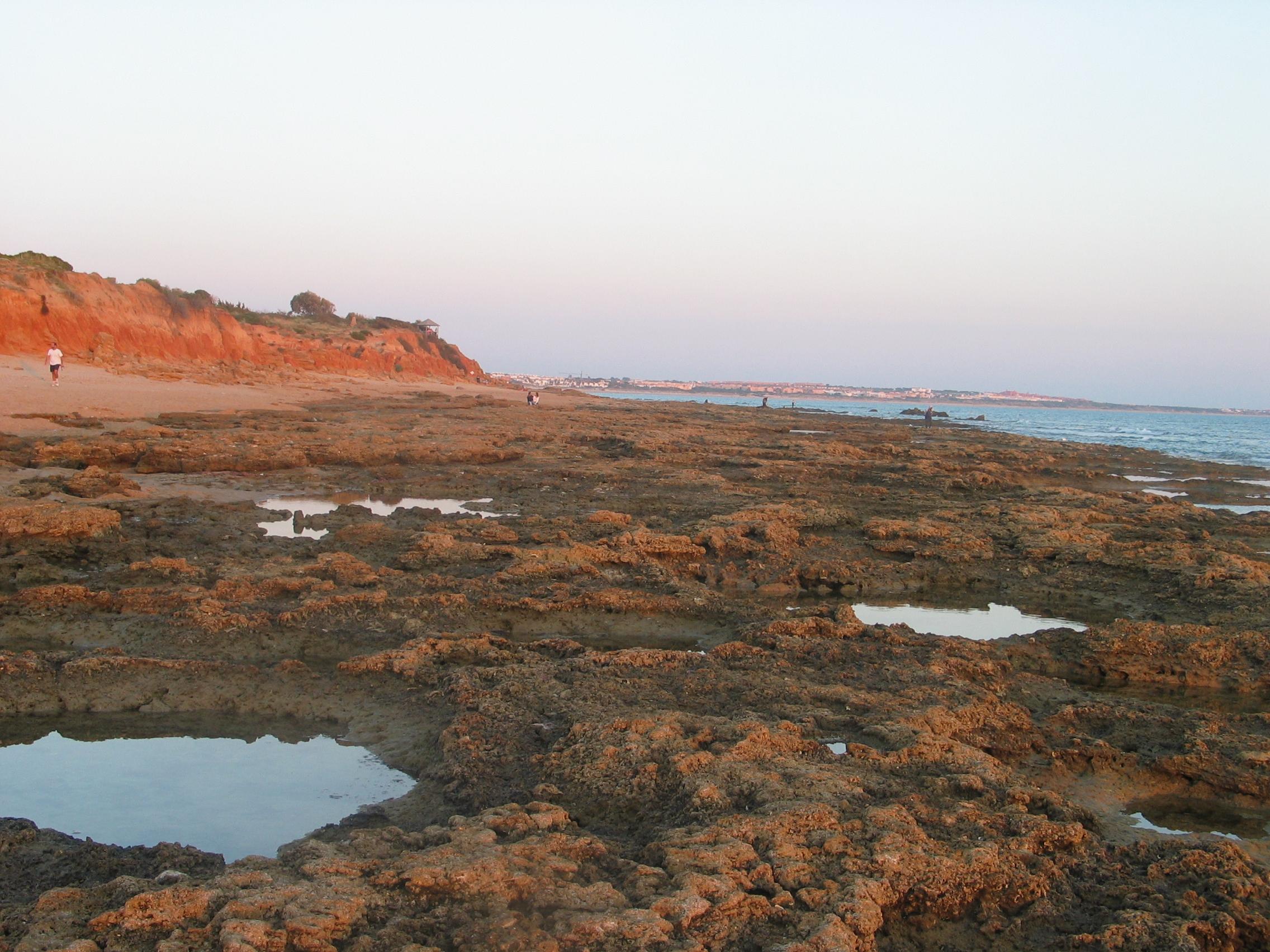 Foto playa Sancti-Petri. Playa de Santi Petri