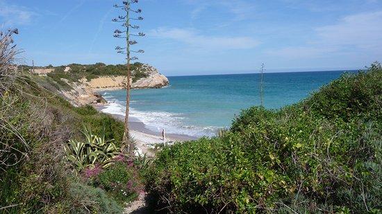 Foto playa El Palomarico / Cala del Muerto.