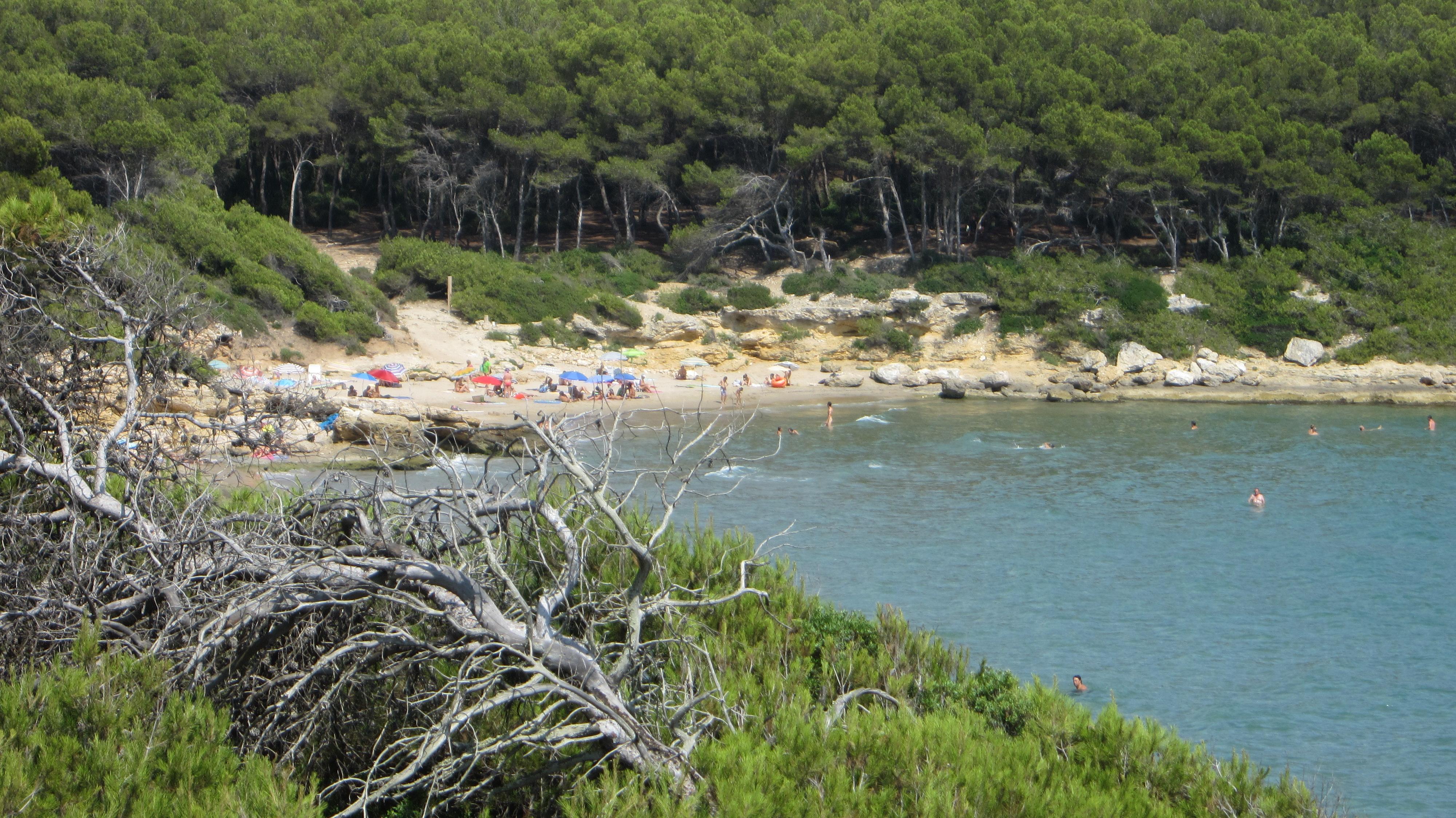 Playa Cala Magre