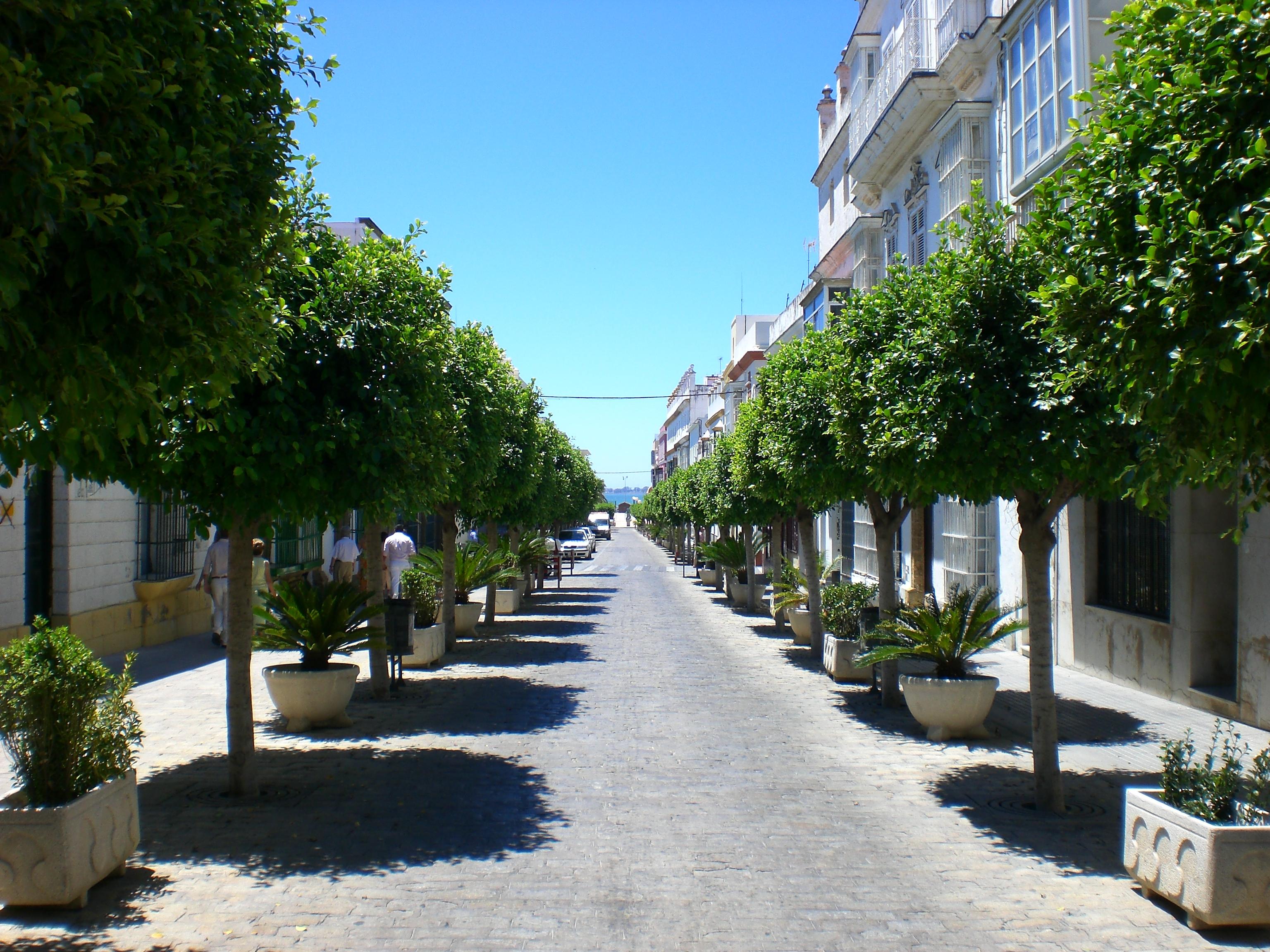 Foto playa La Cachucha. Calle ancha -Puerto Real---Cadiz