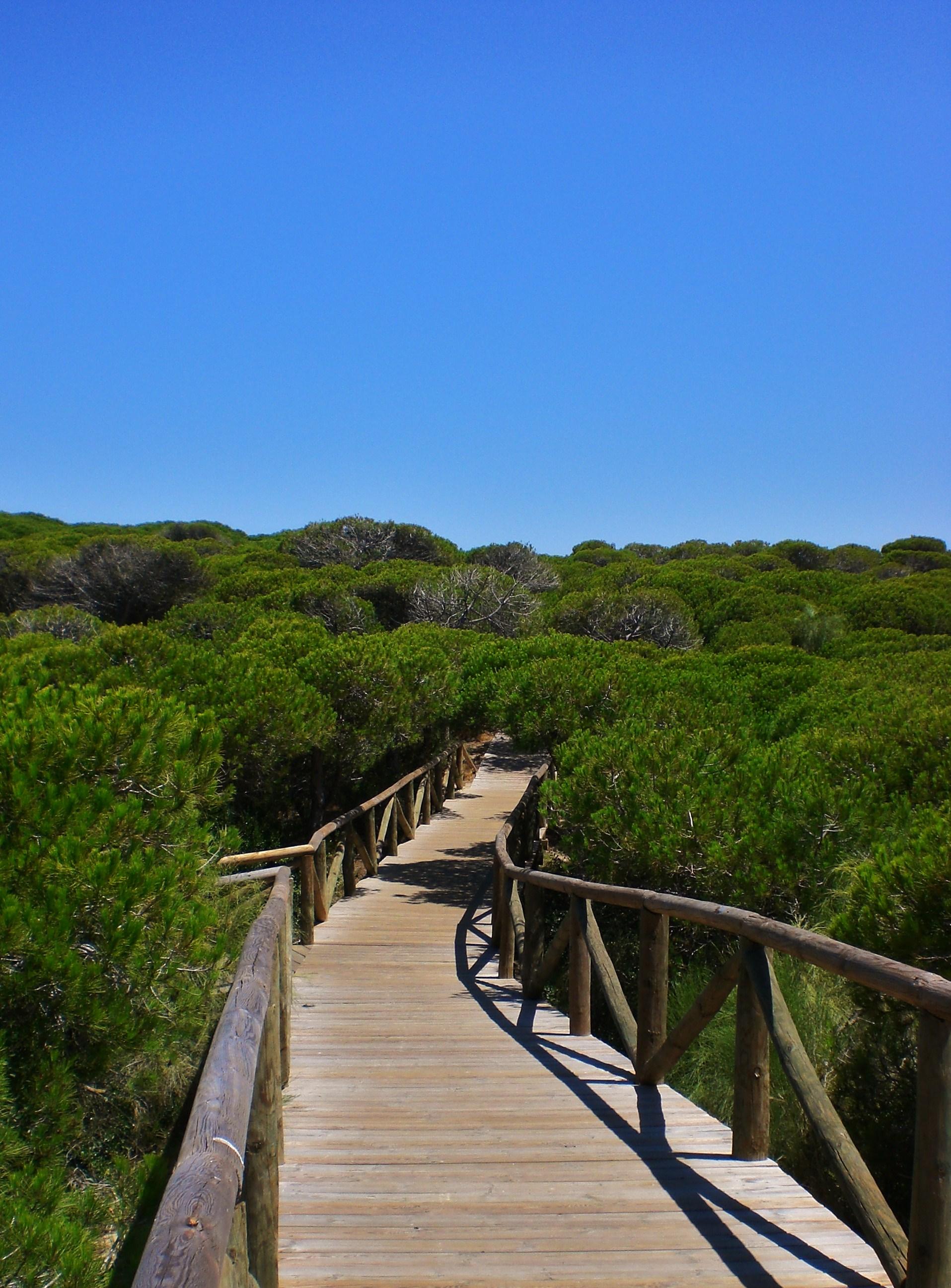 Playa Piedras Gordas / Los Corrales