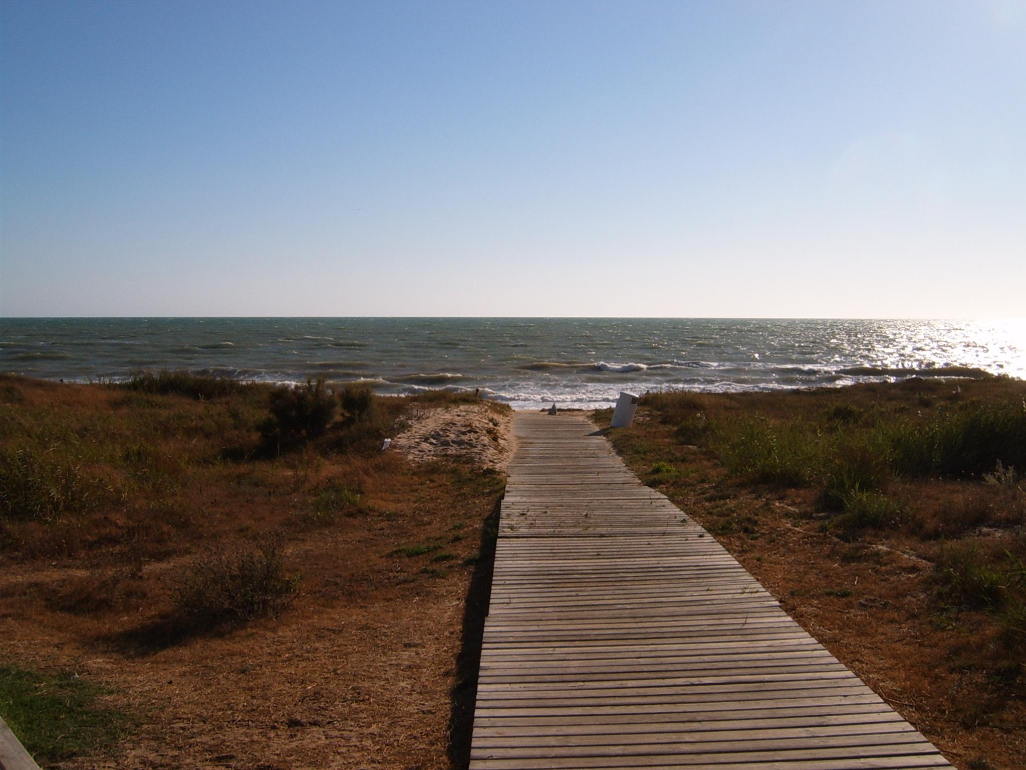 Foto playa Aguadulce / Peginas. La ballena 2 08-04