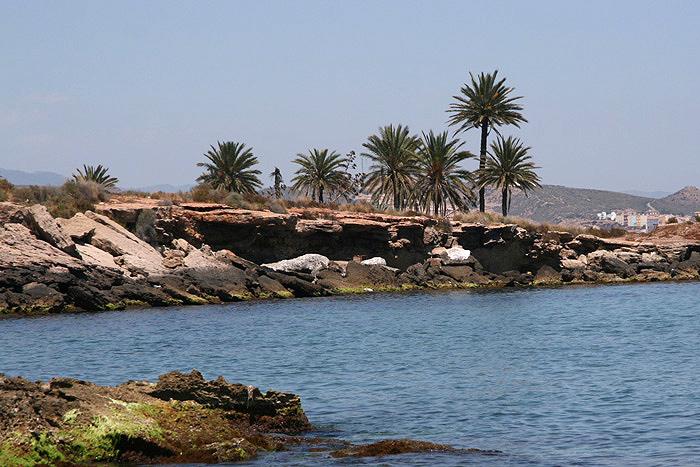 Foto playa Pozo del Esparto. Playa de las Palmeras