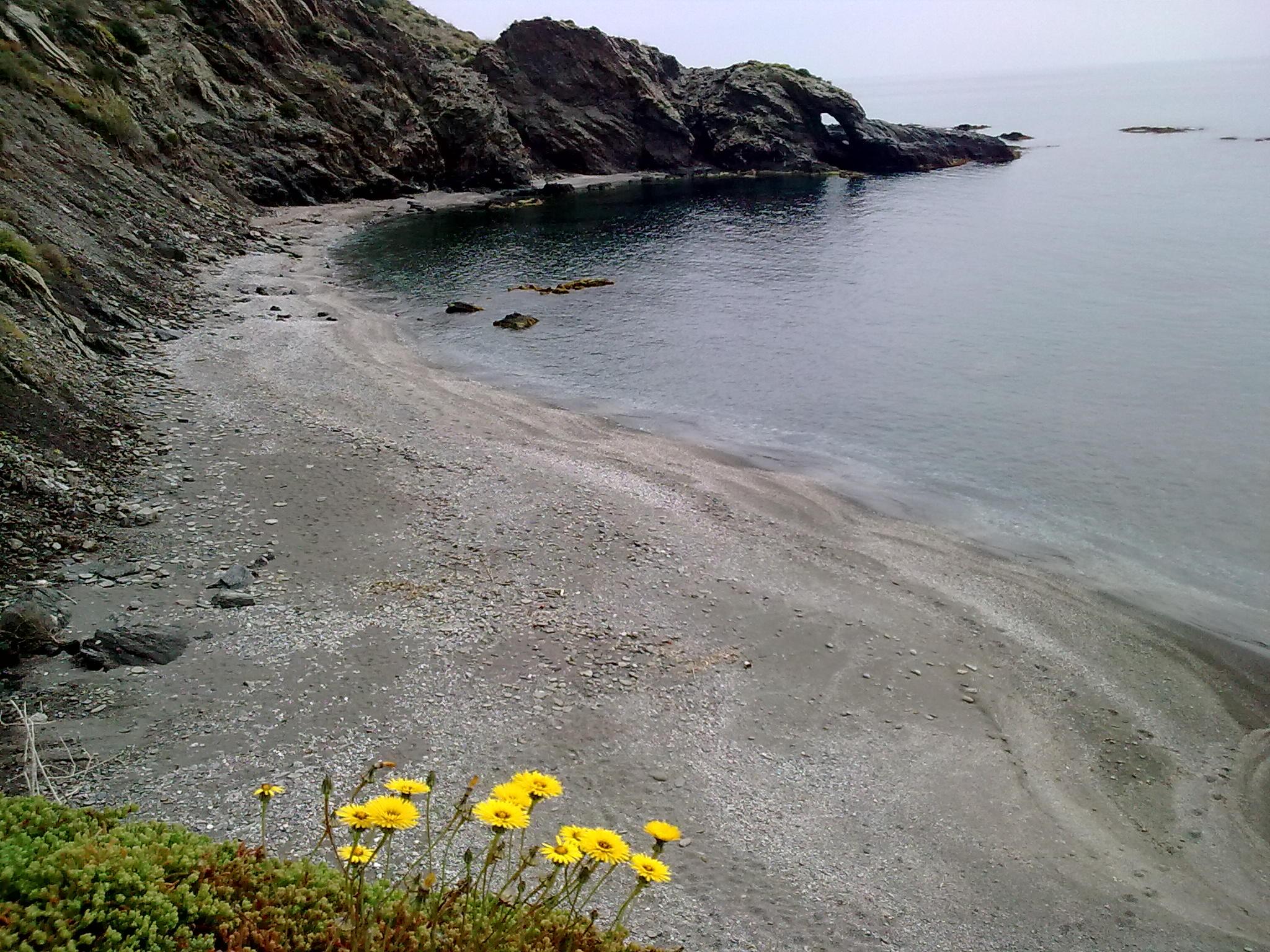 Foto playa Cala Cristal. CALA