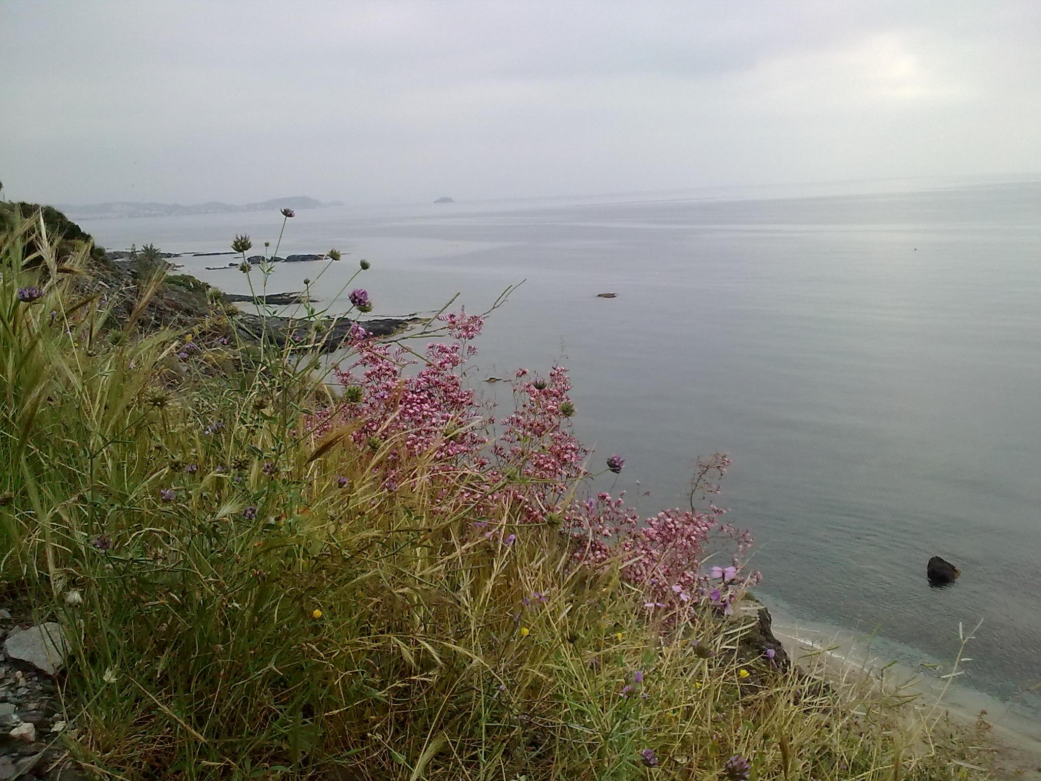 Foto playa Cala Cristal.