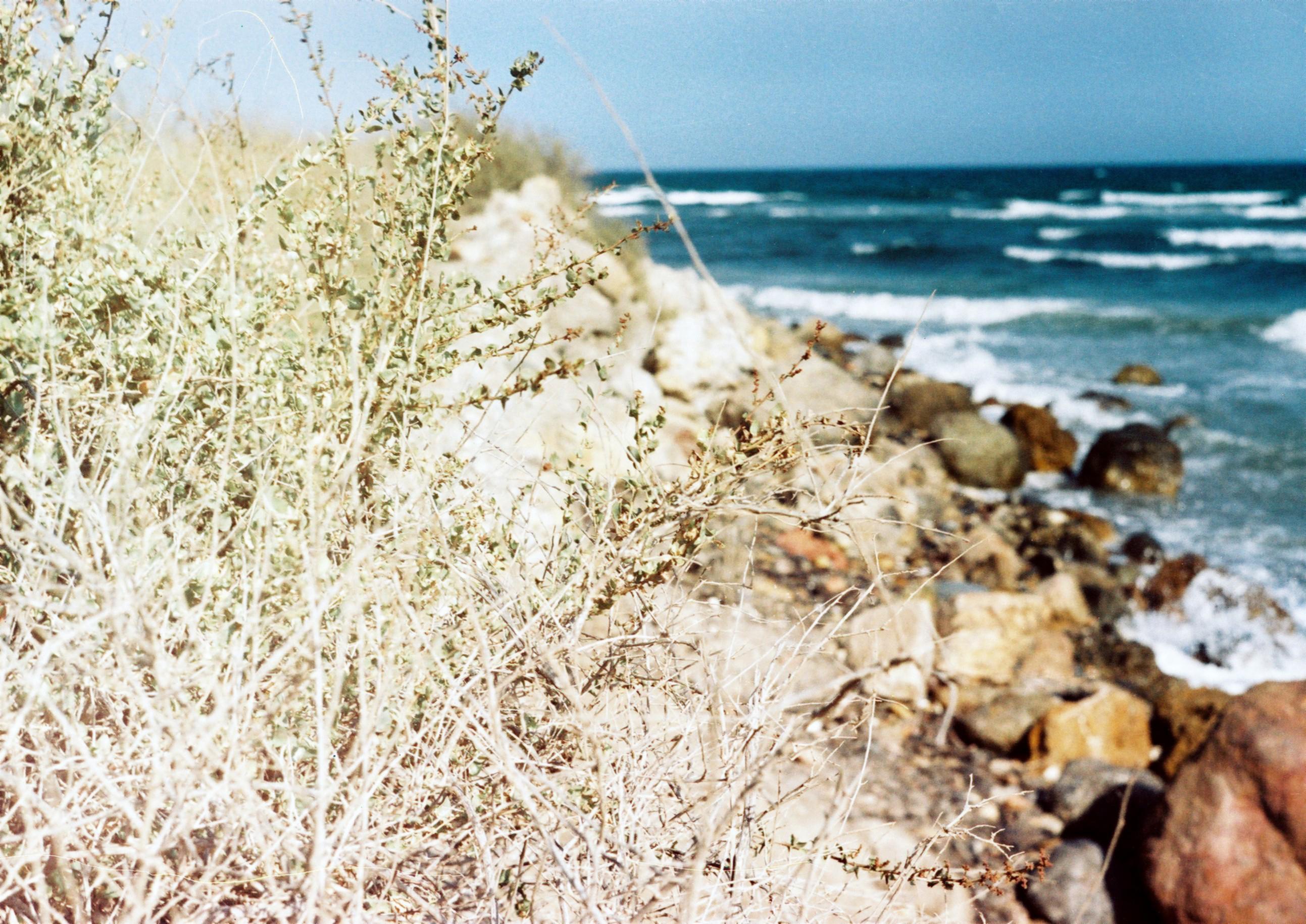 Foto playa Fábrica del Duro. Krantas Å¡alia Garrucha´os (Coast near Garrucha)