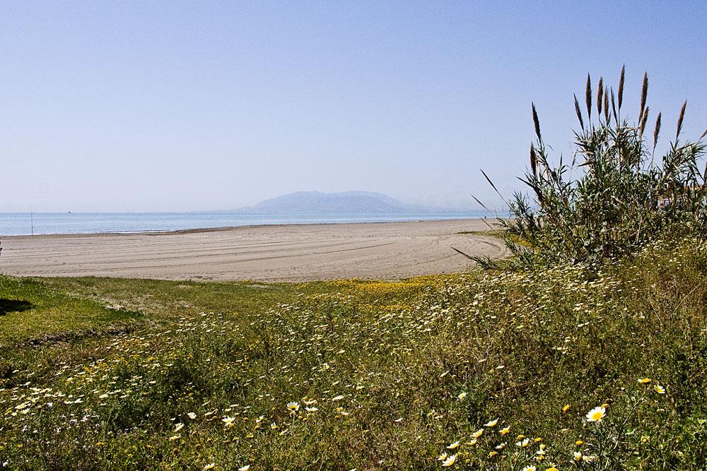 Foto playa Los Rubios. Playa abierta