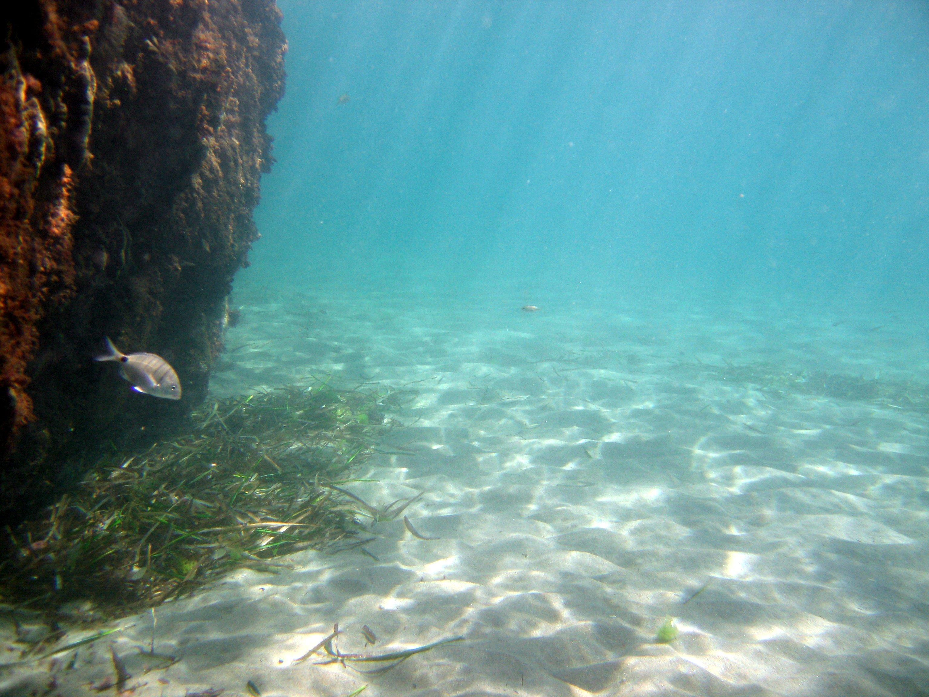 Playa El Sombrerico