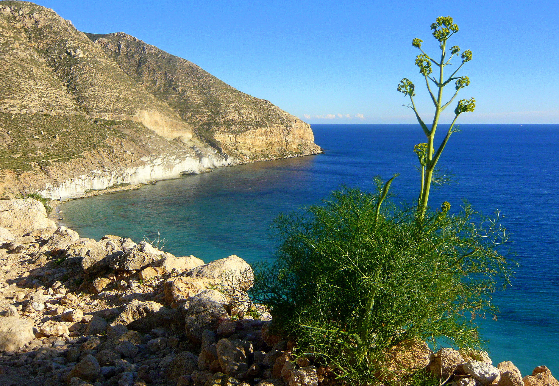 Foto playa Cala San Pedro. Cala de San Pedro