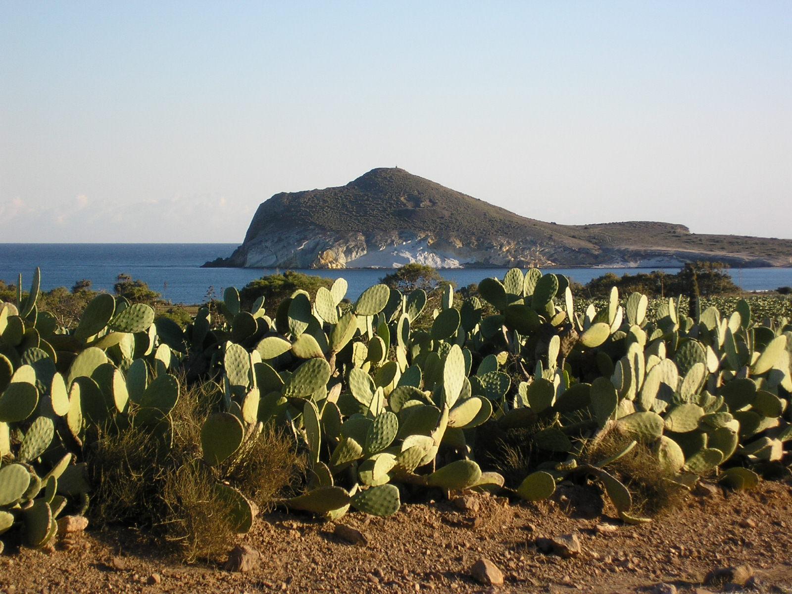 Foto playa Cala Higuera. Playa de los genoveses P1290233
