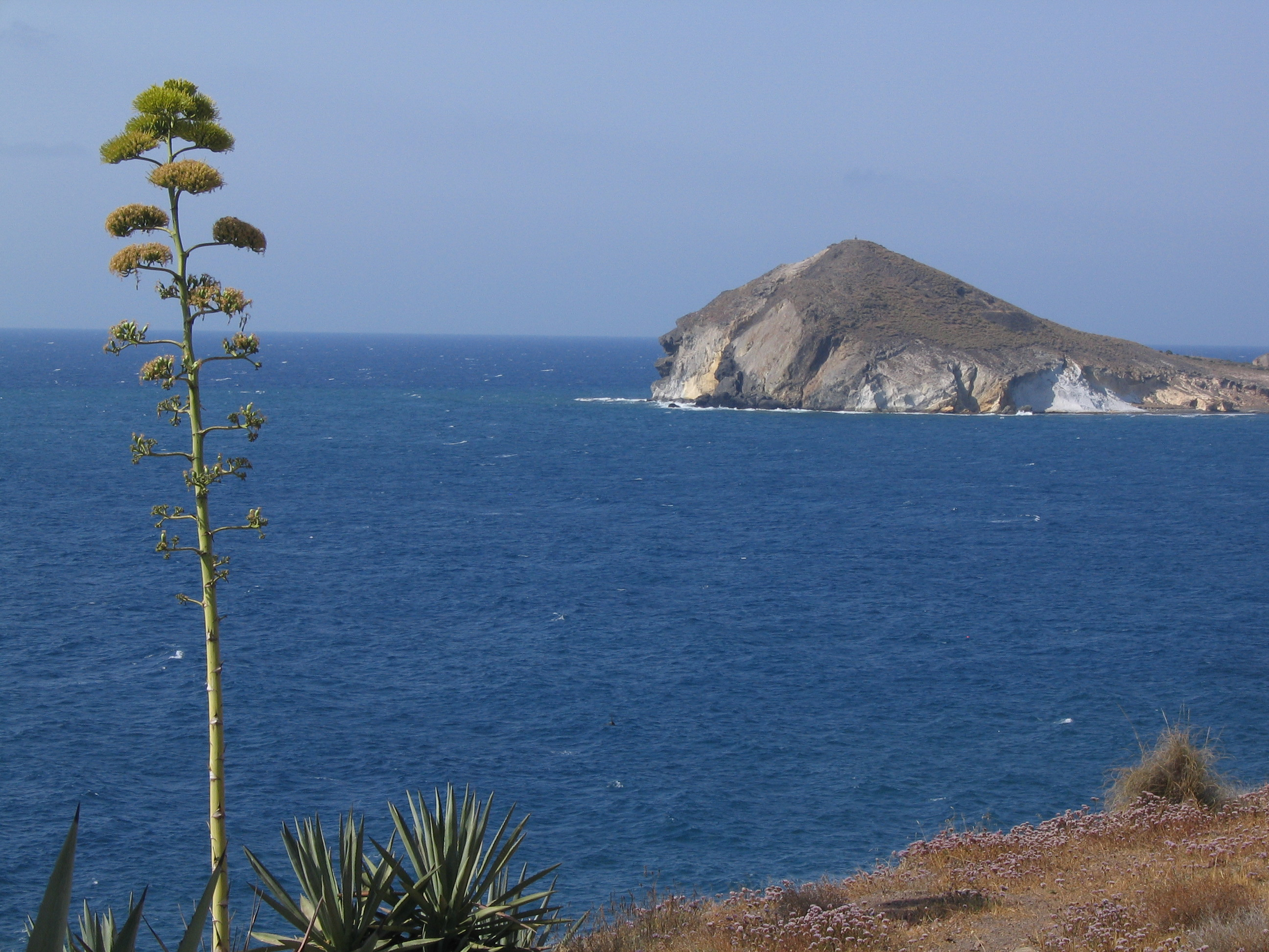 Foto playa Cala de los Amarillos. Peñon de los Genoveses (Almeria)
