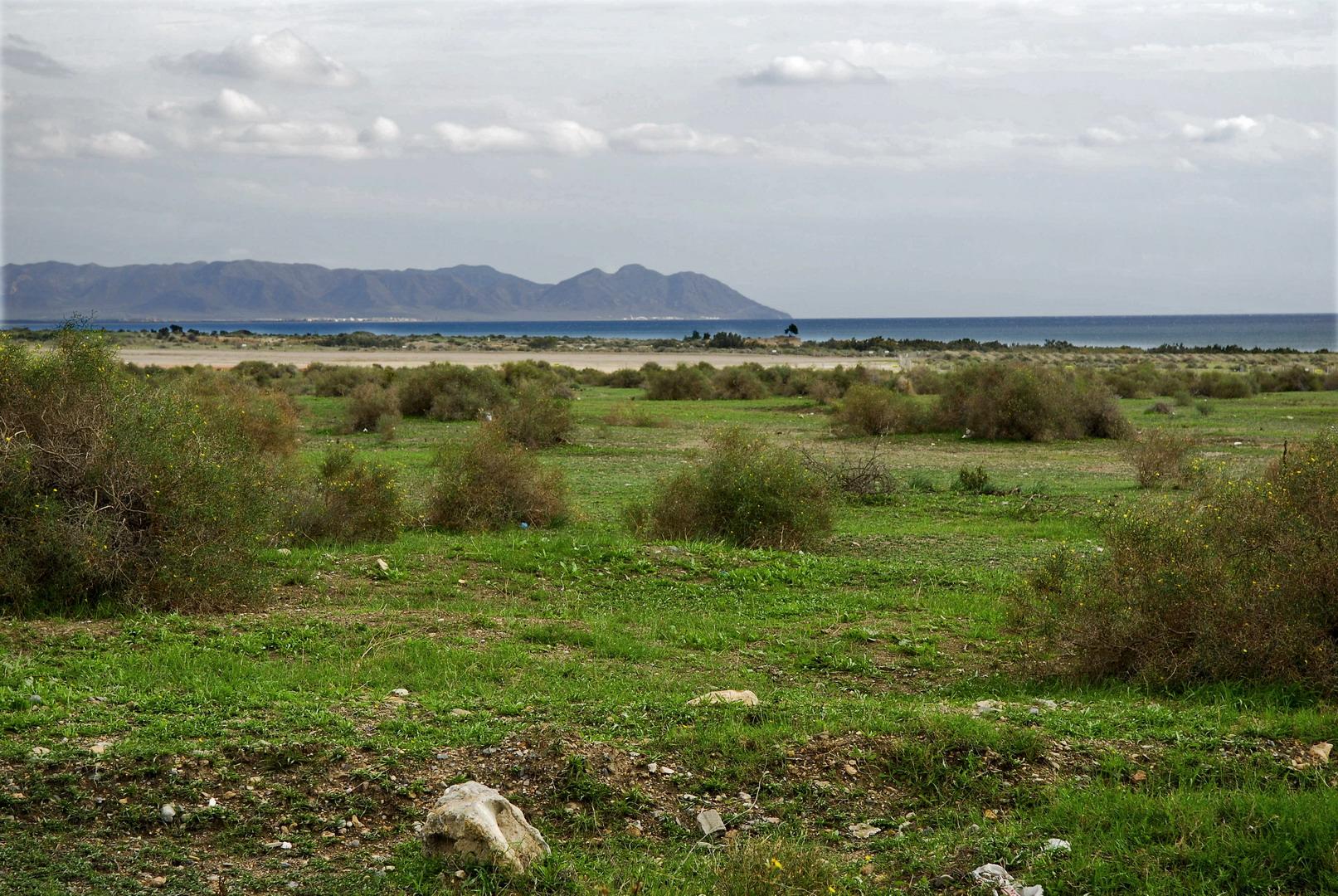 Foto playa El Perdigal / Alquián. Alquian - Cabo de Gata al fondo