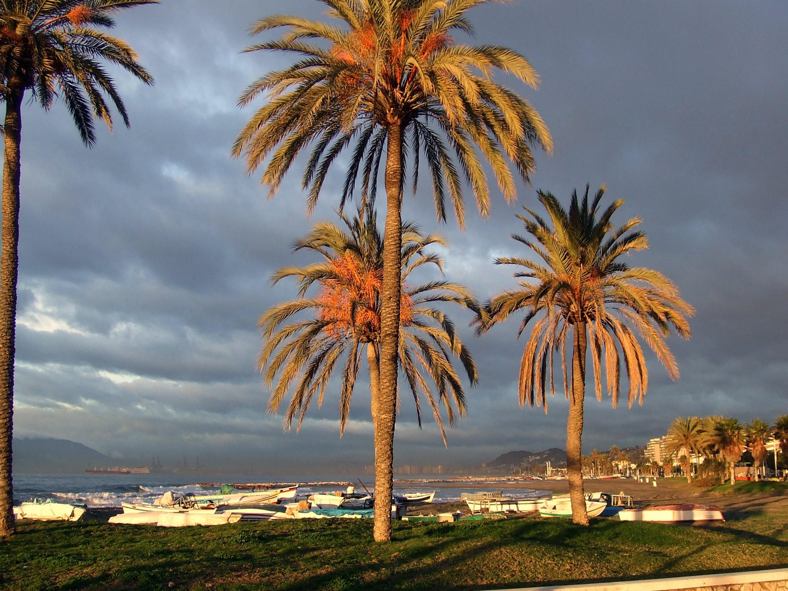 Foto playa El Candado. Amanece en el varadero
