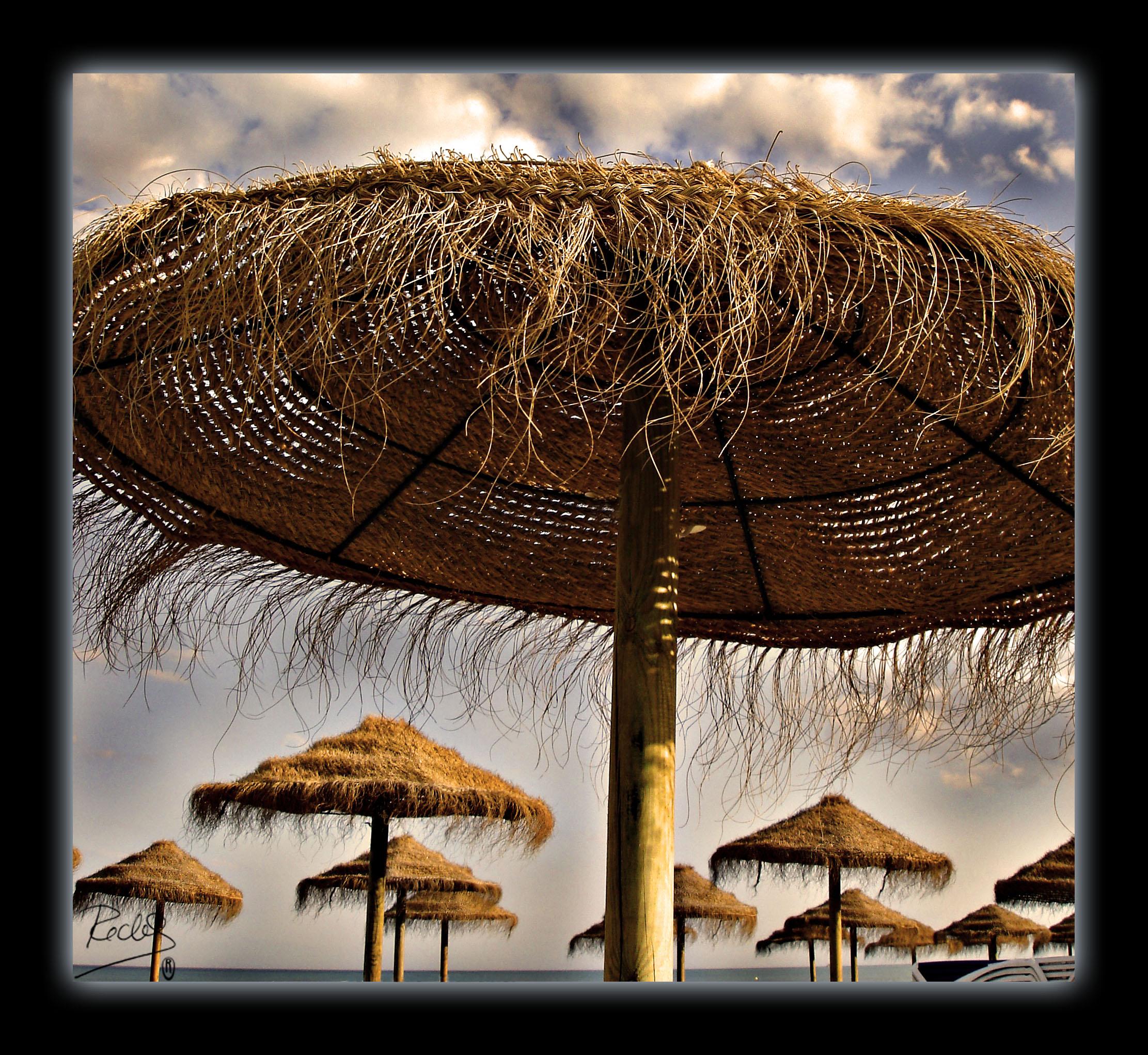 Foto playa La Malagueta. Tostadas de tanto  Sol