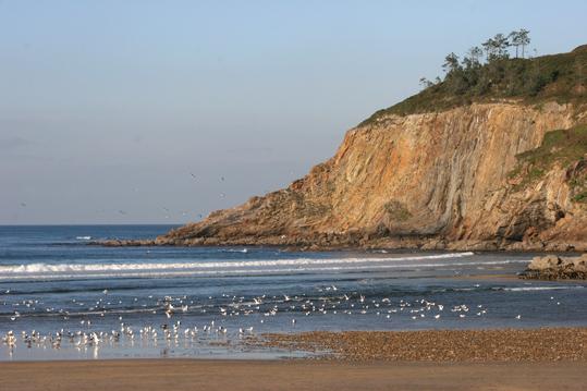 Foto playa La Herbosa. Playa de Cueva (Valdés)