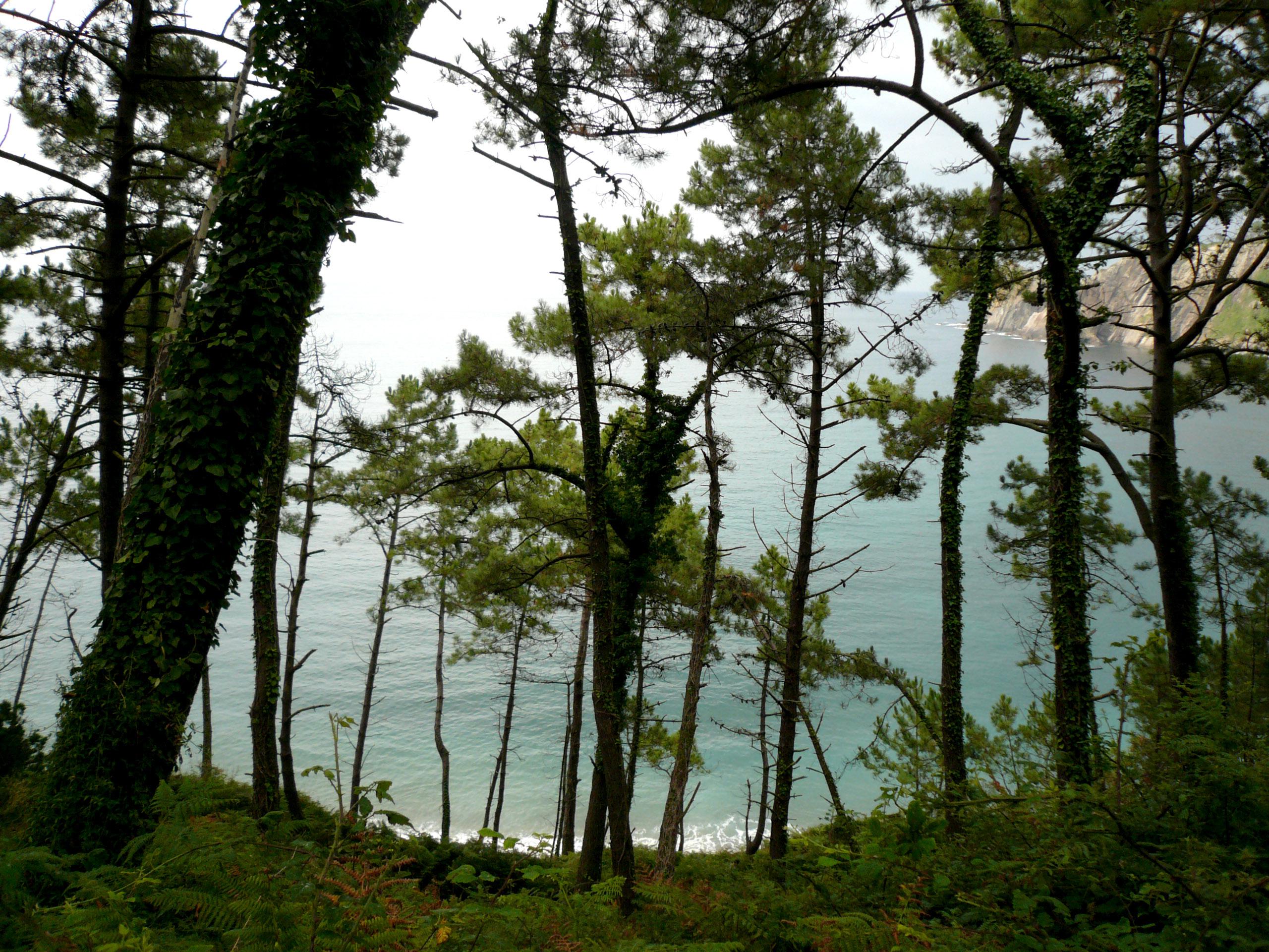Foto playa Oleiros. Camino de Oleiros