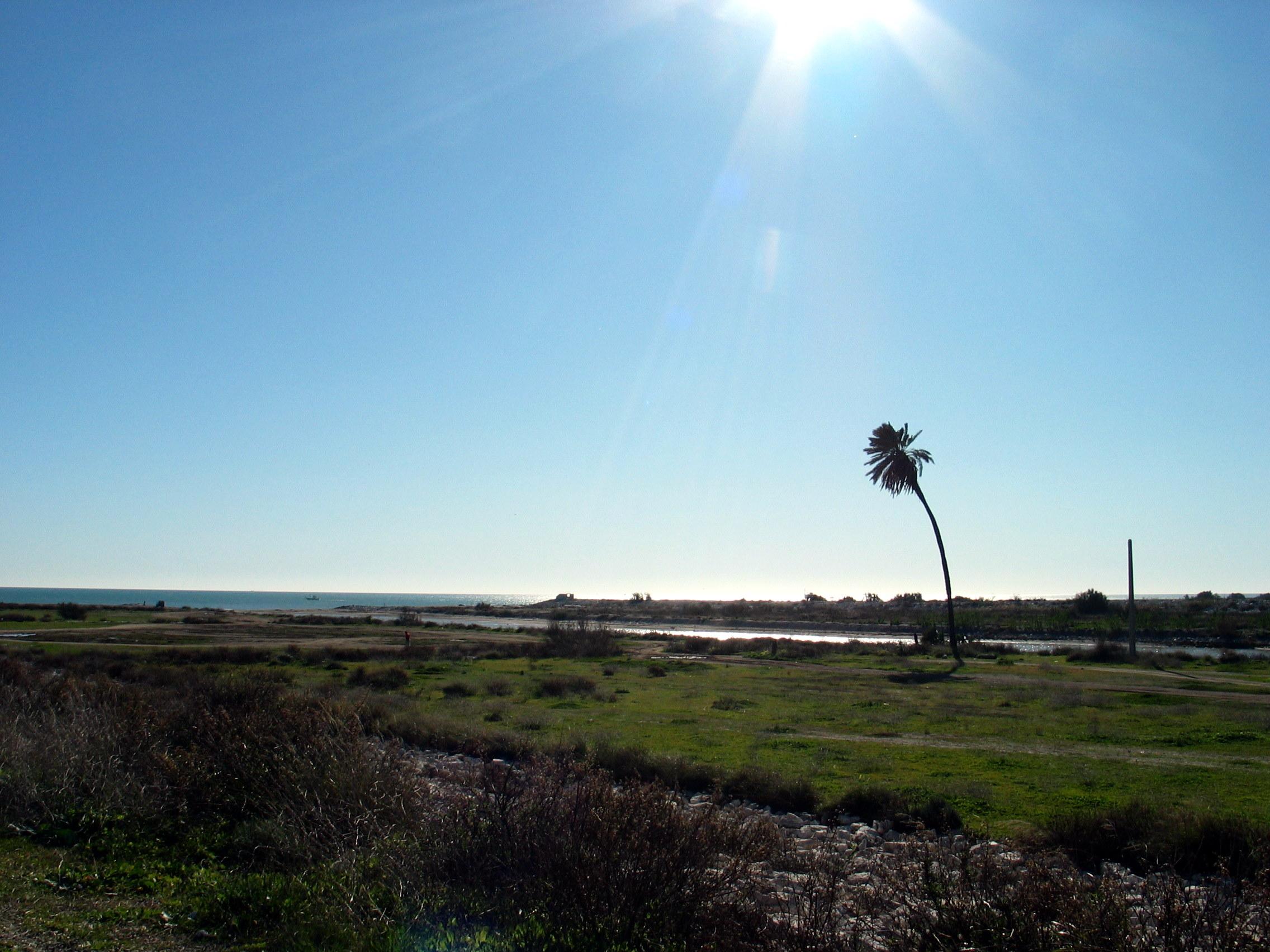 Foto playa Guadalhorce. Desembocadura del río Guadalhorce