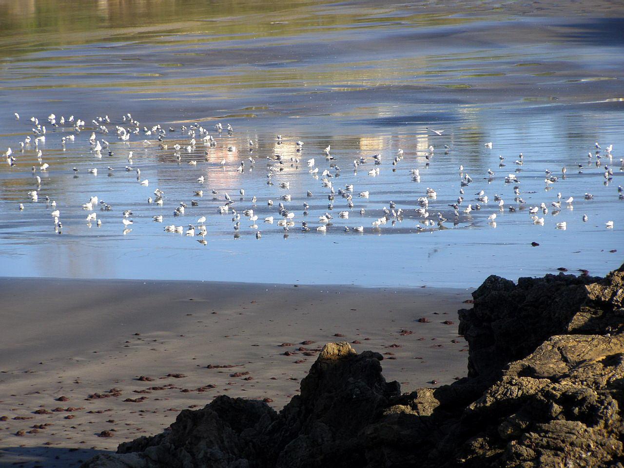 Foto playa Santa María del Mar. Playa de Santa Maria del Mar, Asturias