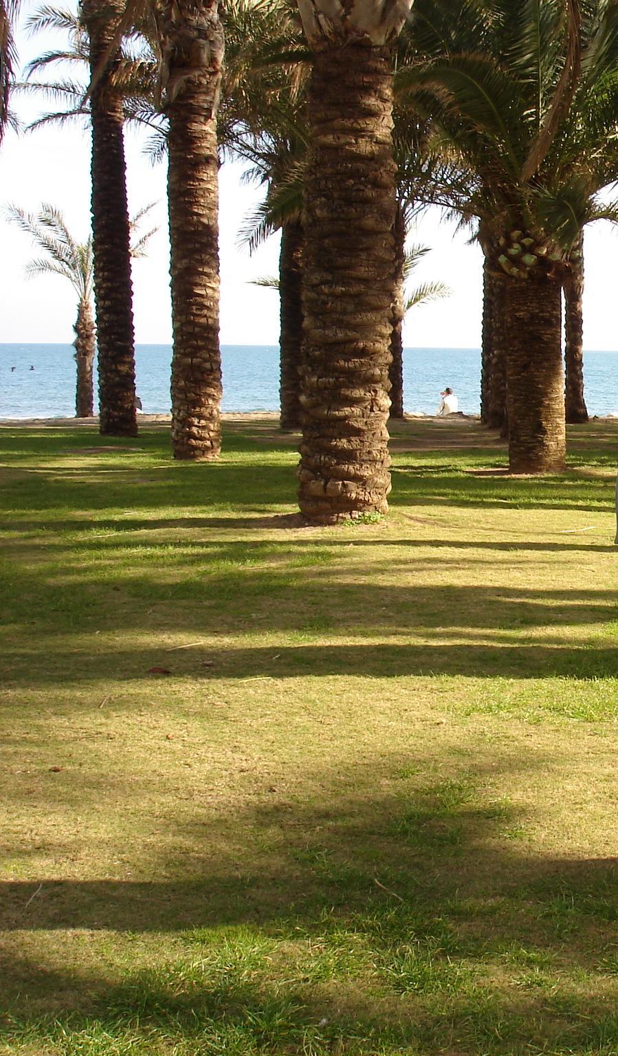 Foto playa La Carihuela. Torremolinos