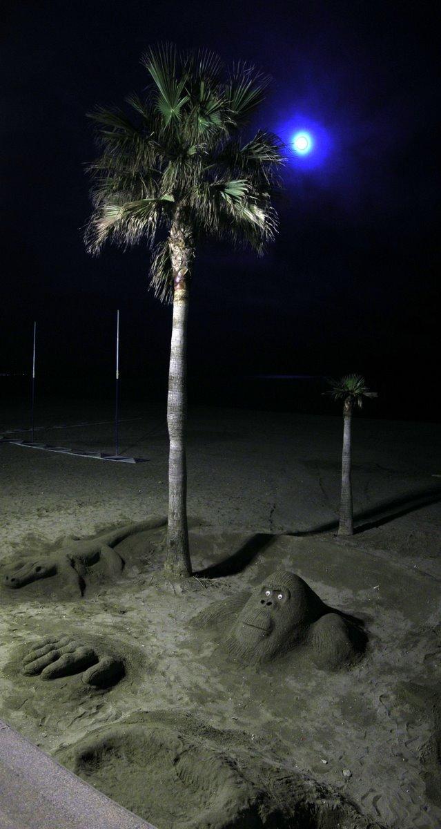 Foto playa La Carihuela. Careto de mono a la luz de la luna