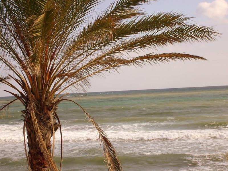 Foto playa Arroyo de la Miel. Benalmadena