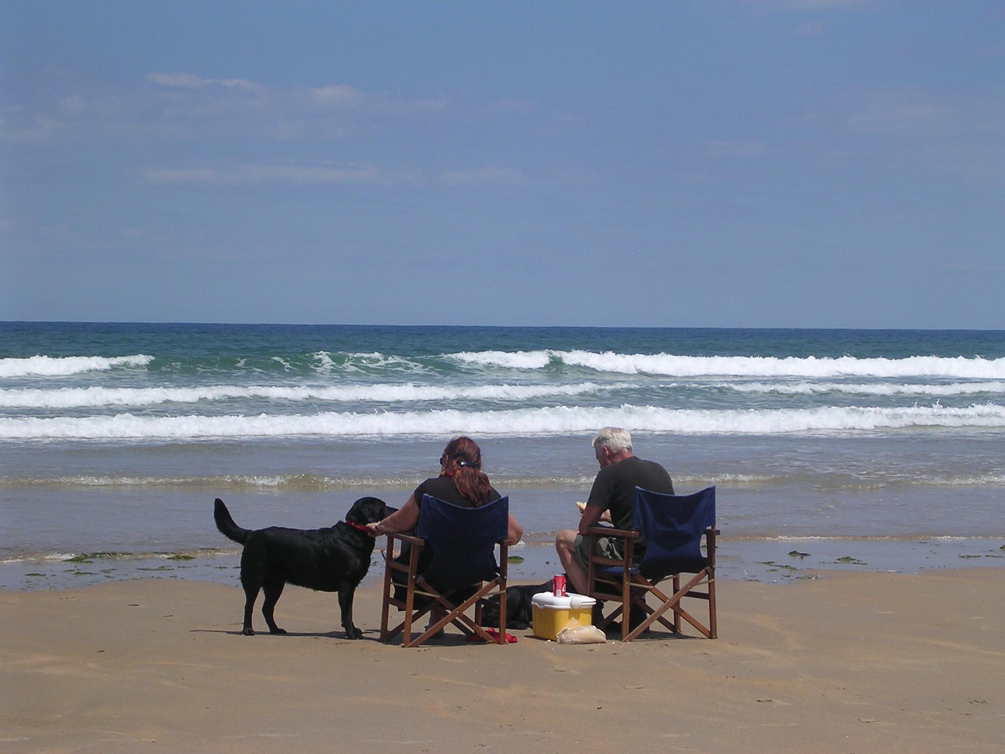 Foto playa Oyambre. Disfrutando de un día de playa