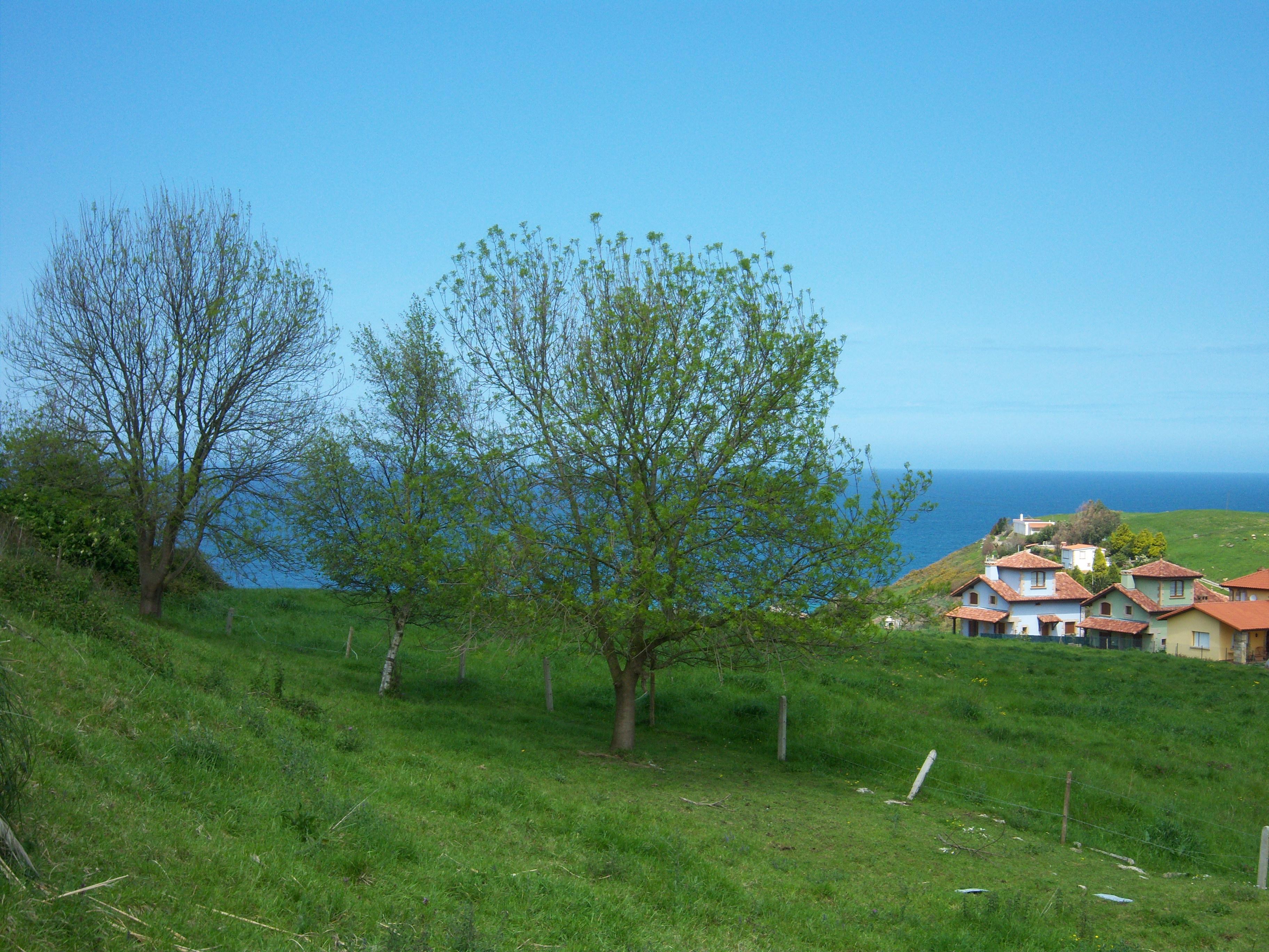 Foto playa Luaña / Cóbreces. Pisaje de Cobreces (Cantabria)