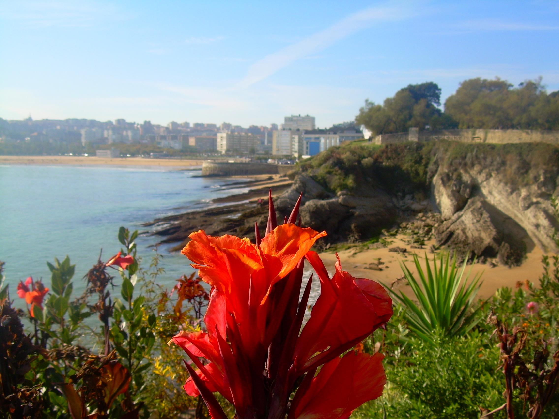 Foto playa Mataleñas. santander -Topide