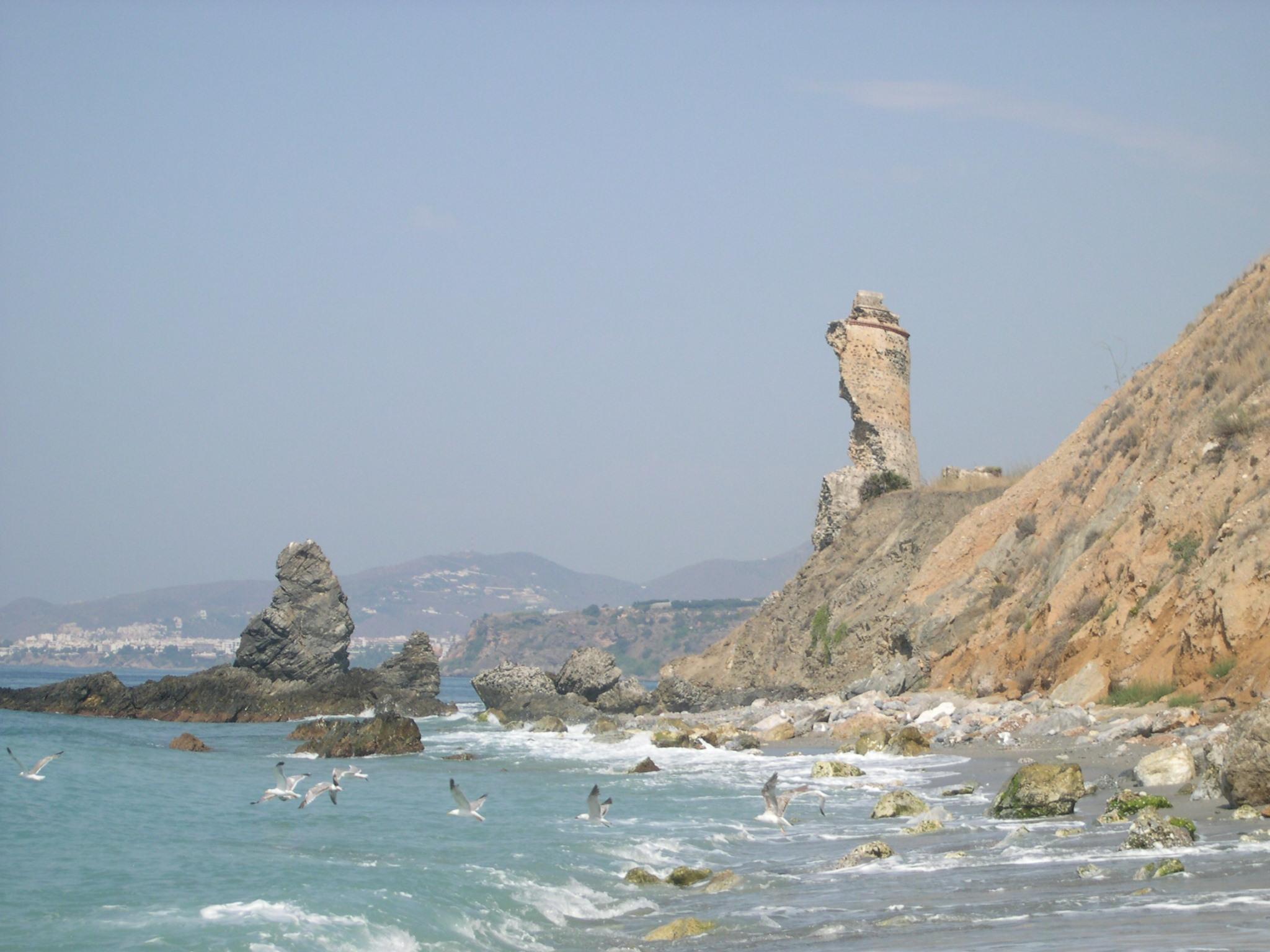 Playa Cala de la Torre del Pino