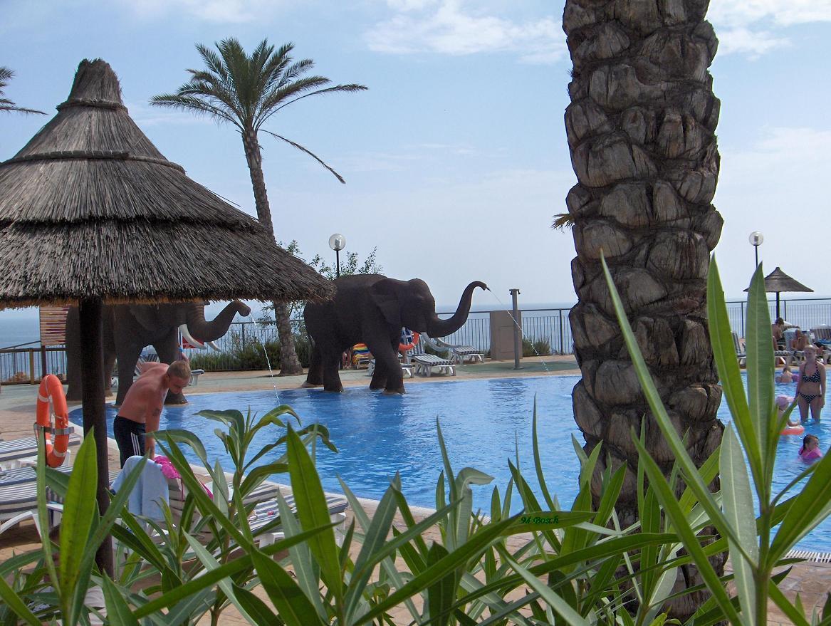 Foto playa La Morera. Piscina de Hotel