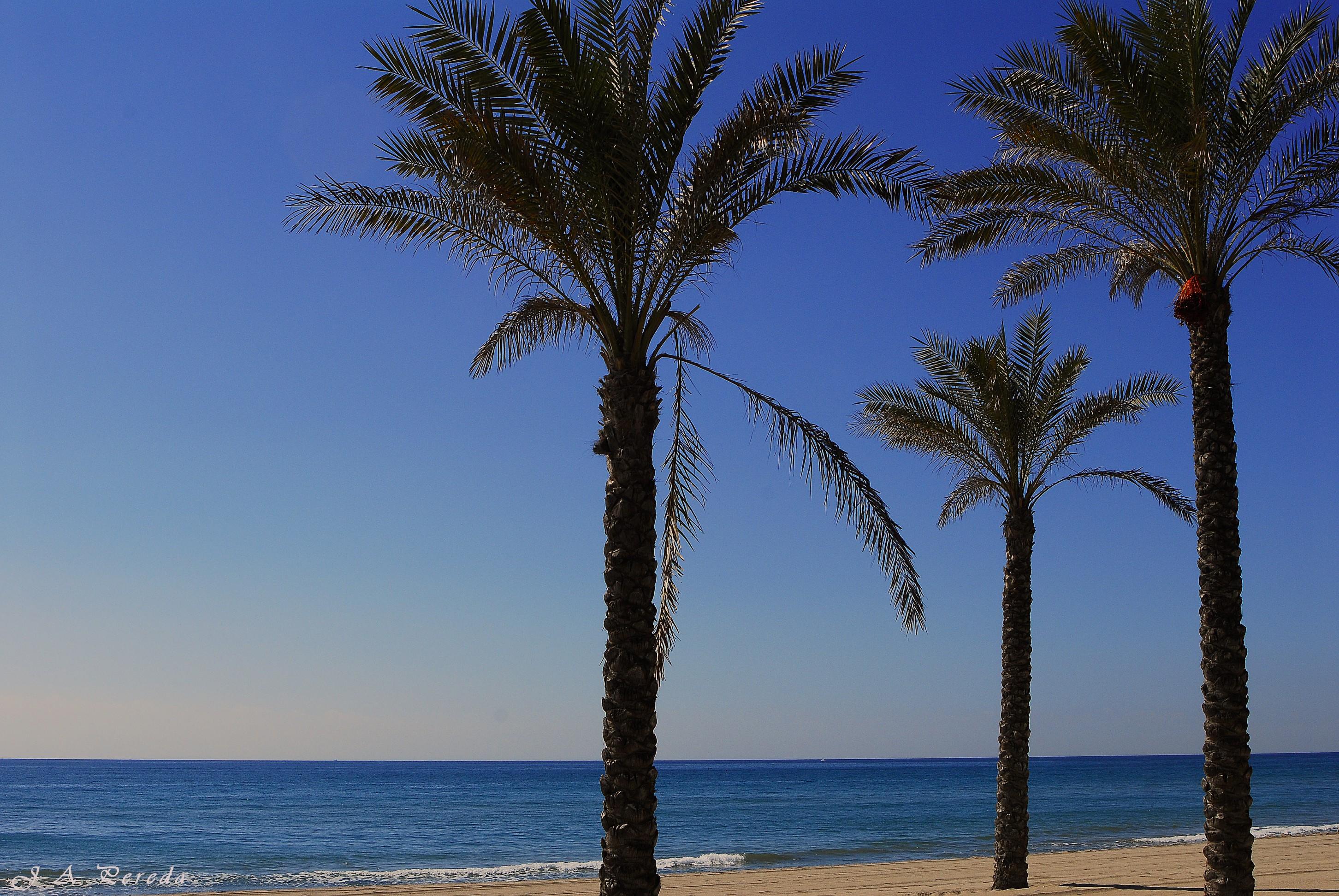 Playa Calafell