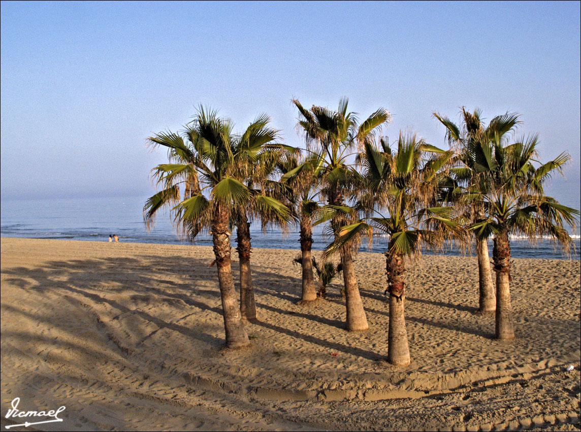 Foto playa El Francàs. 70422-50 COMARRUGA PLAYA