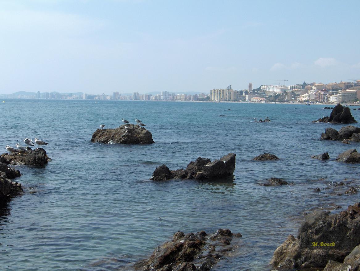 Foto playa Tajo de la Soga. LOS BOLICHES-FUENGIROLA