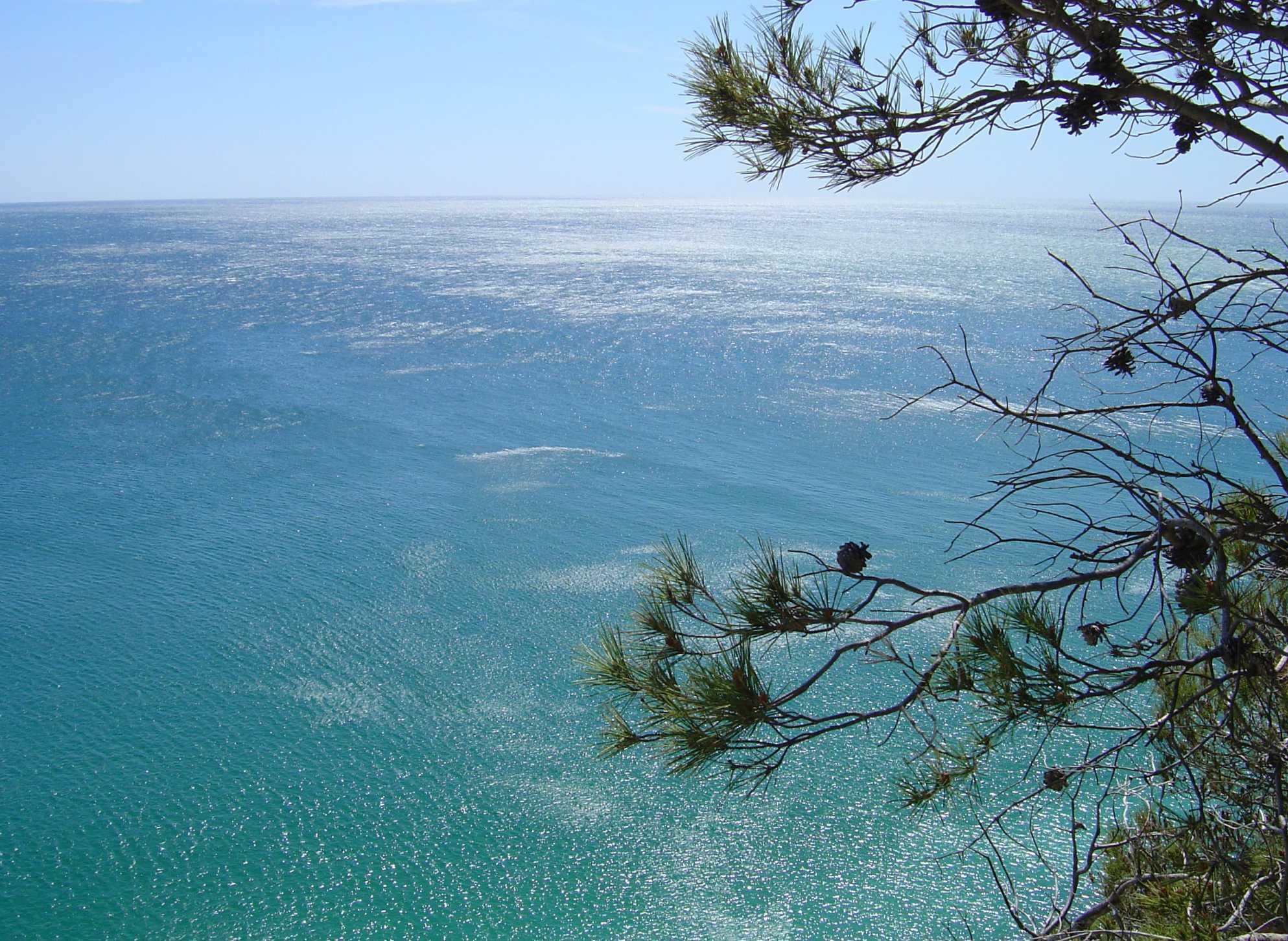 Playa Cala Crancs