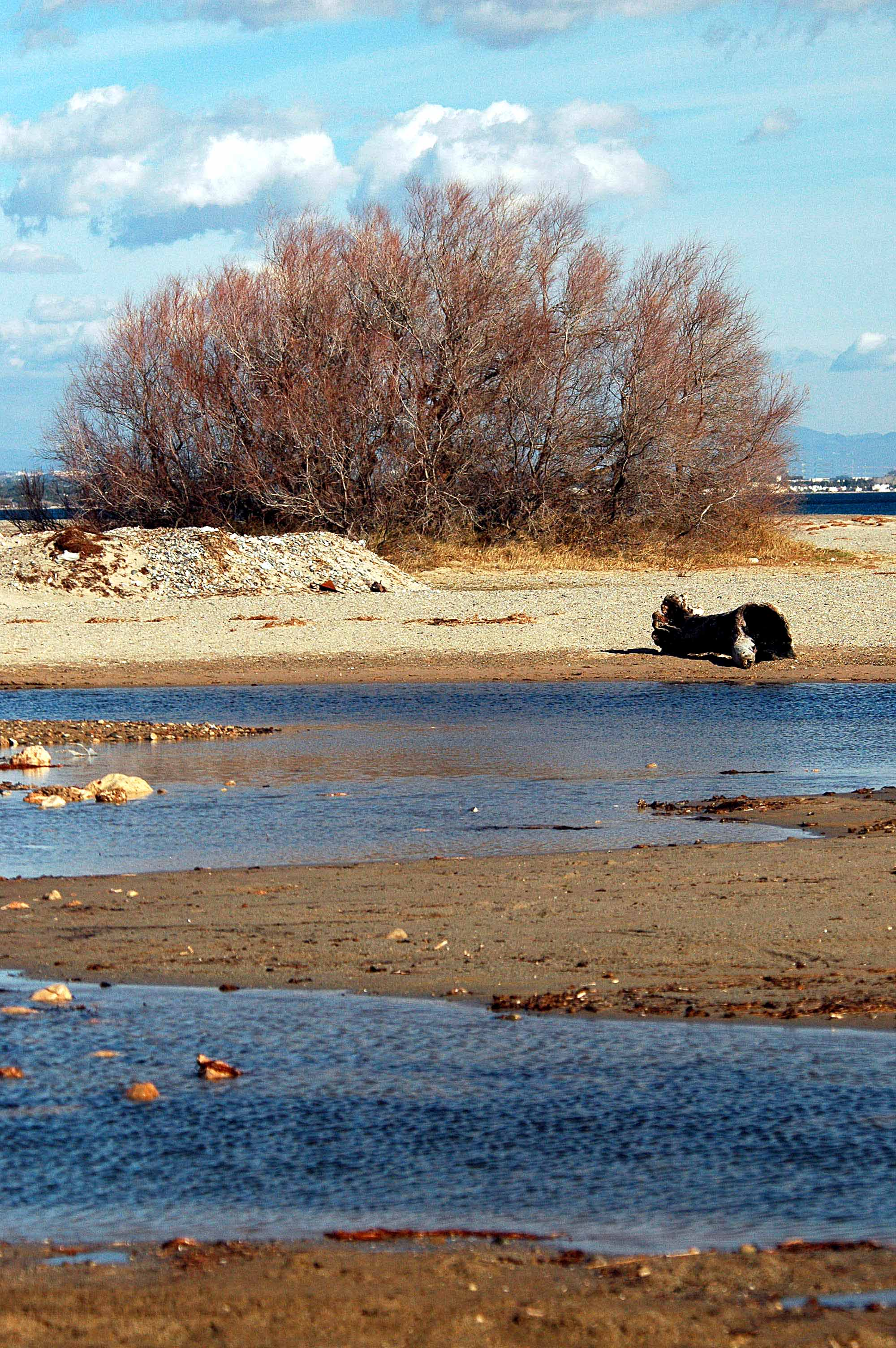 Foto playa Punta del Riu. Desembocadura del riu de Llastres.