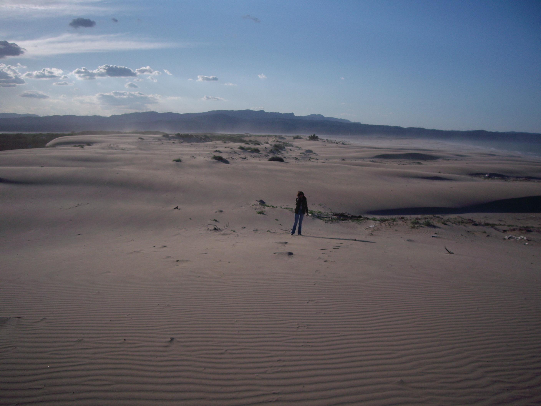 Foto playa Punta del Fangar. Platja de la Marquesa  (Deltebre)
