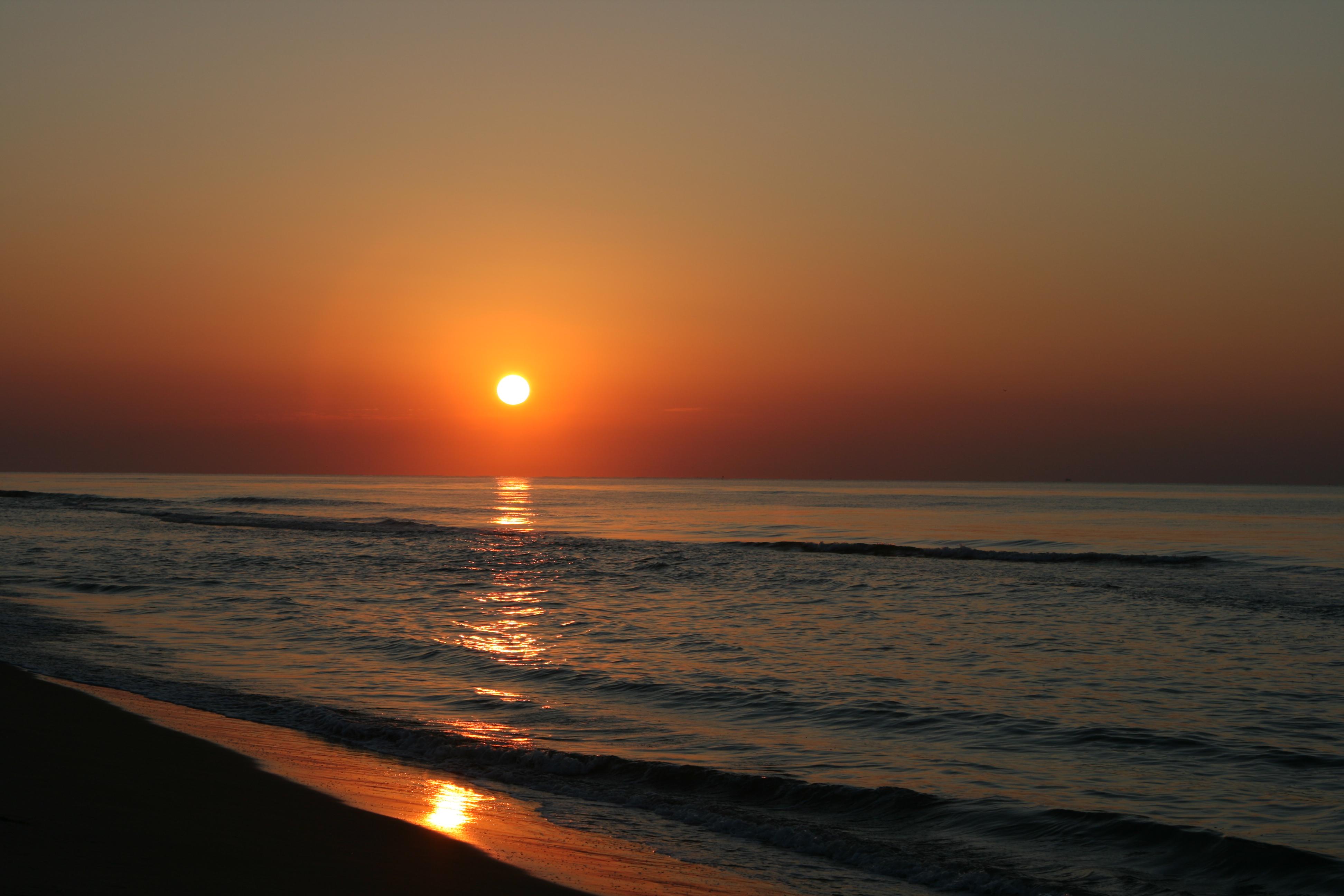Foto playa Los Eucaliptos. orto delta